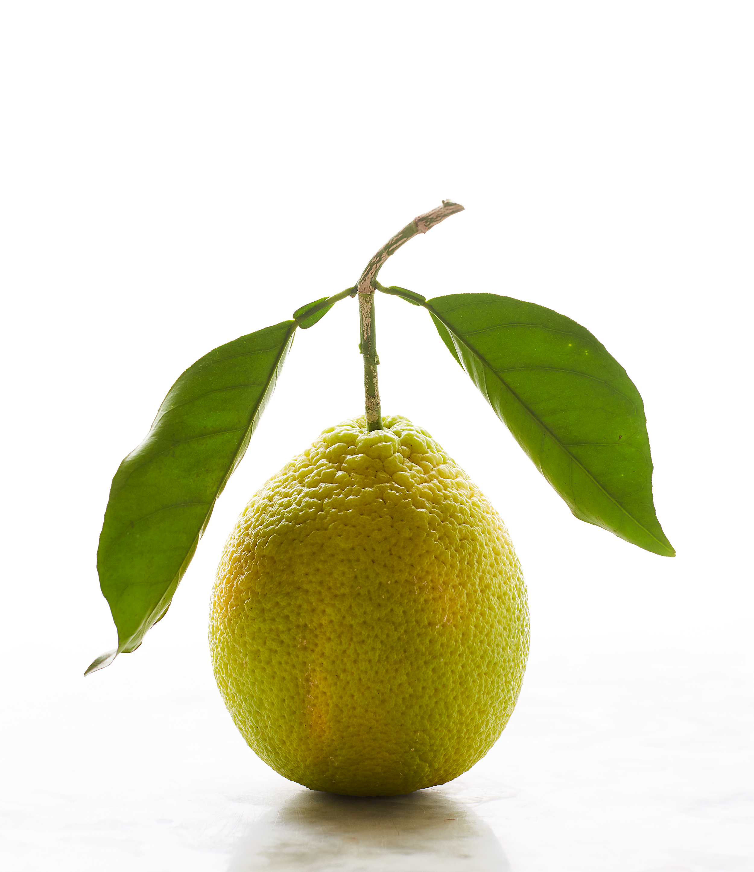 11_lemon.png