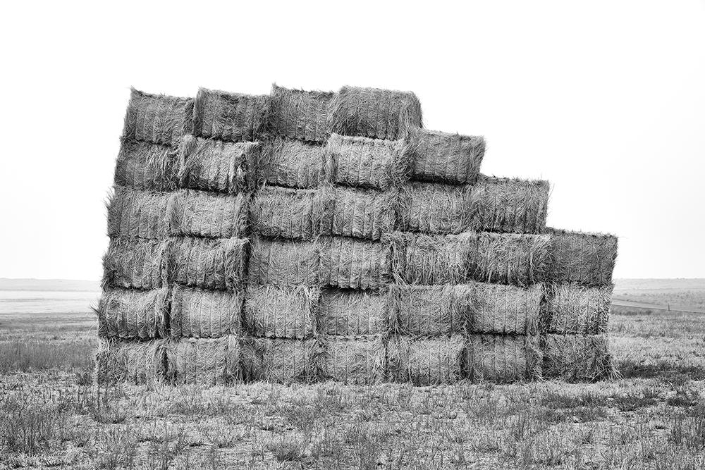 3_haystack.png