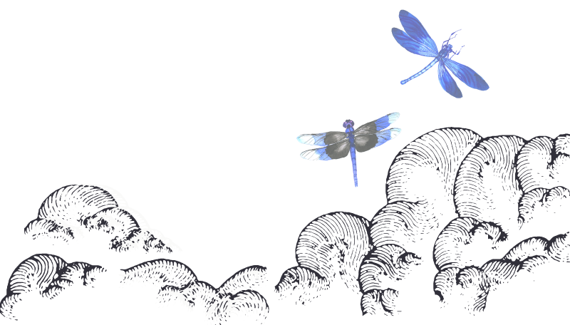 dragonfly-about.png