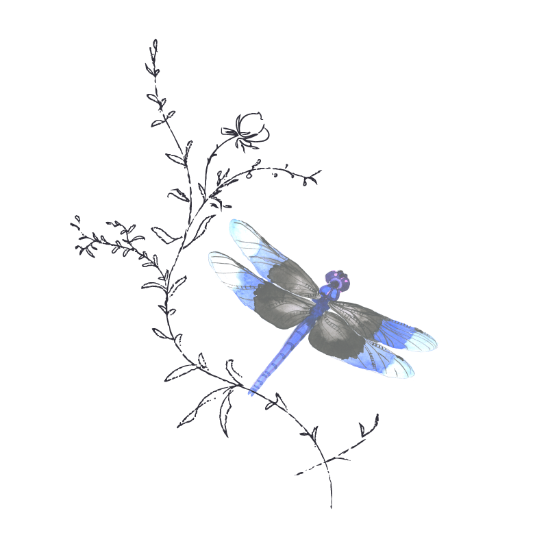 dragonfly-dana-mcdowell.png