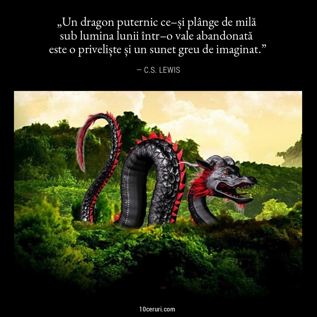 adunarea-dragonilor (1).jpg