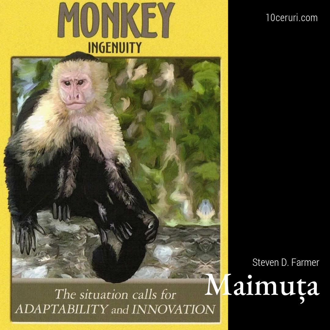 maimuța.jpg