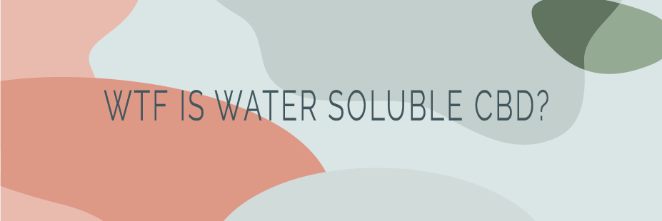 water soluble header.png