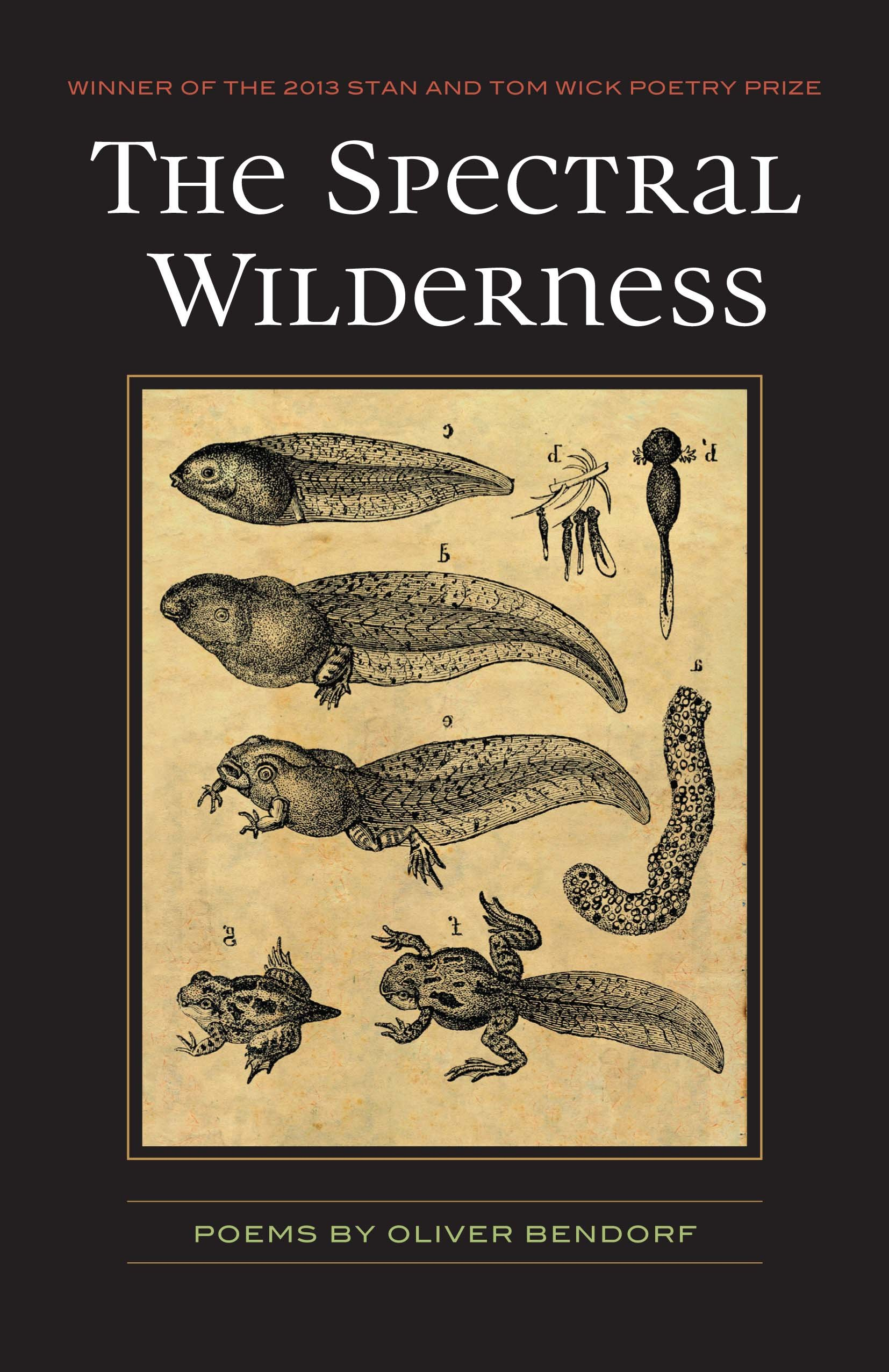 the-spectral-wilderness-cover.jpg