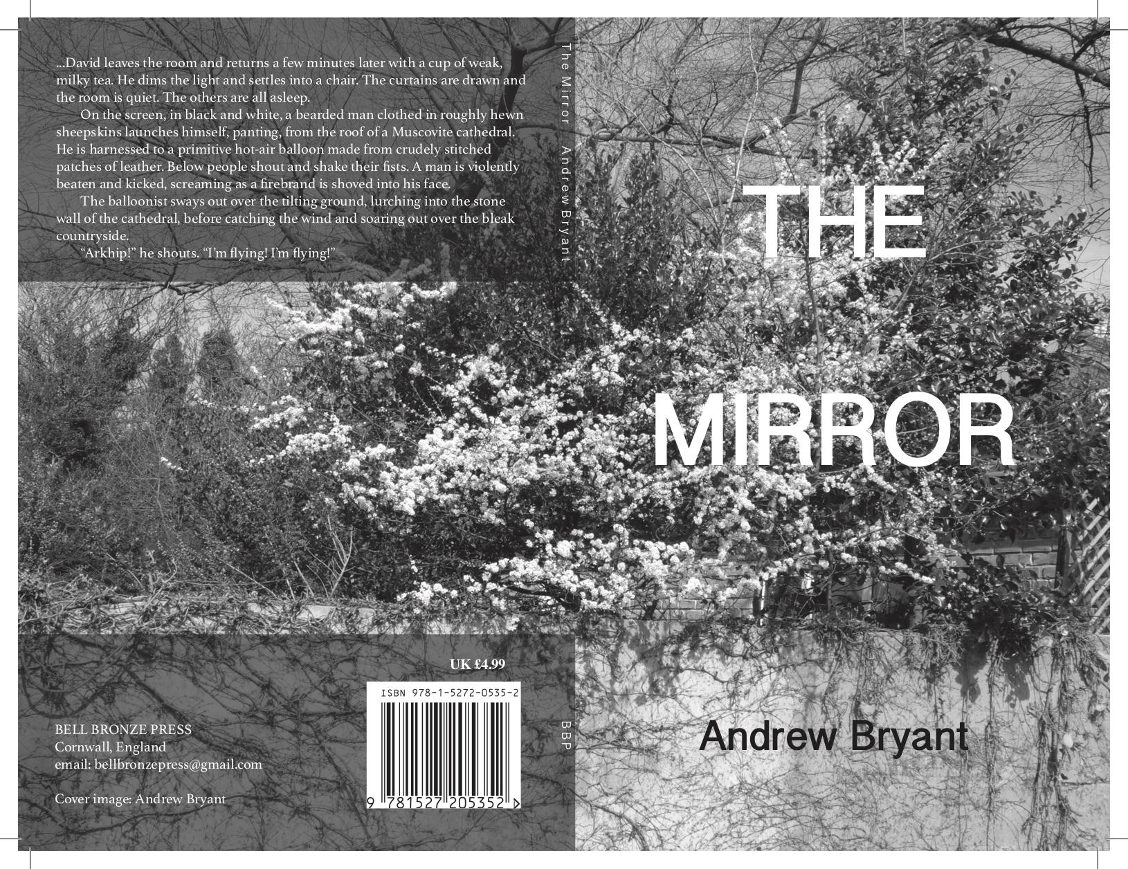 ab-the-mirror-pback-cover-v03-grayscale-60%-shade.jpg