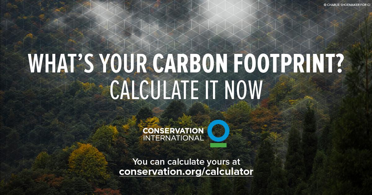 CarbonCalc_Offset-Social_4.png