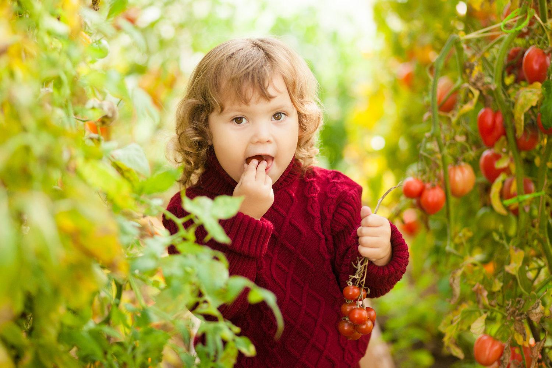 photo credit: www.yates-kids-gardening.com