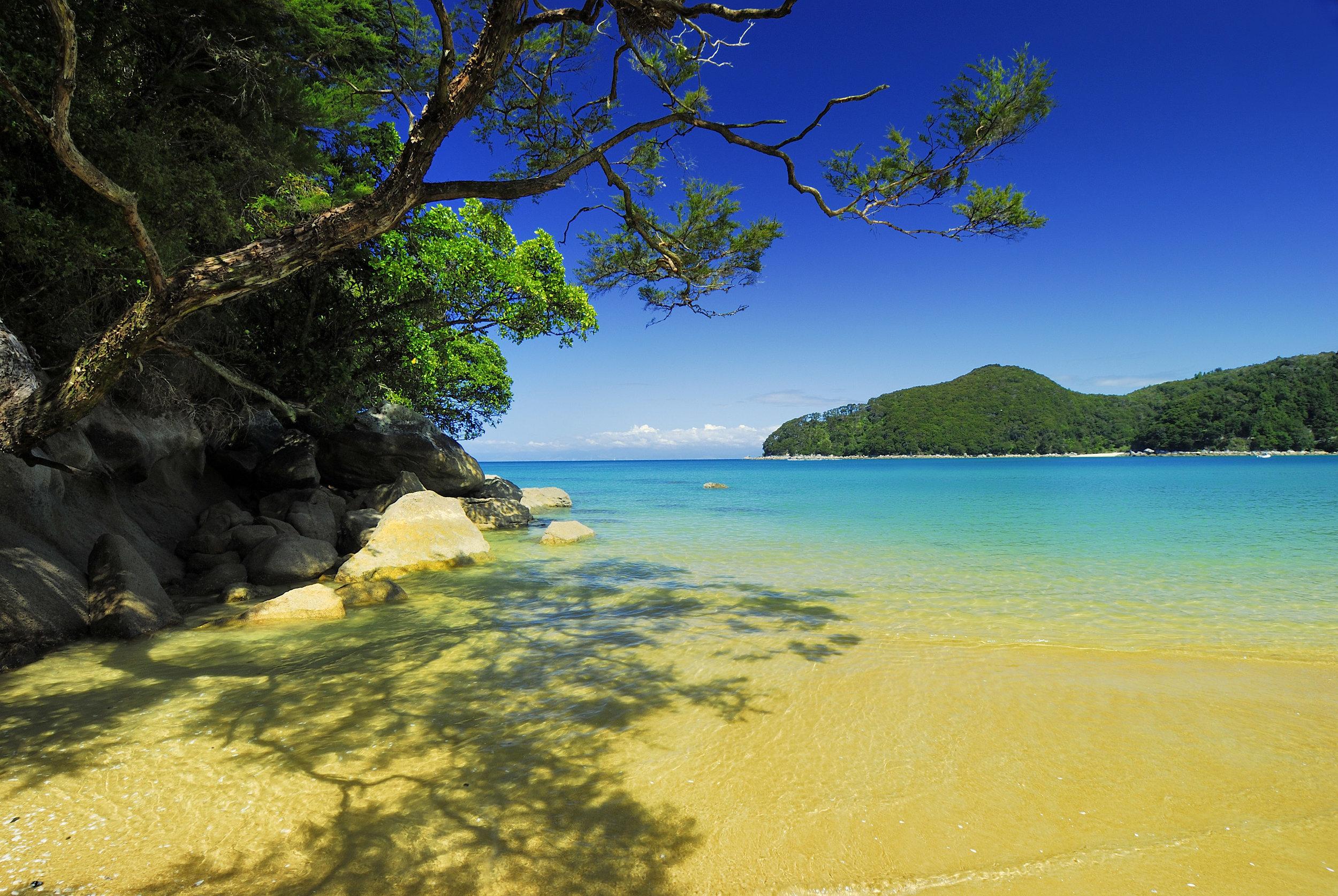 Bark Bay, Able Tasman South Island
