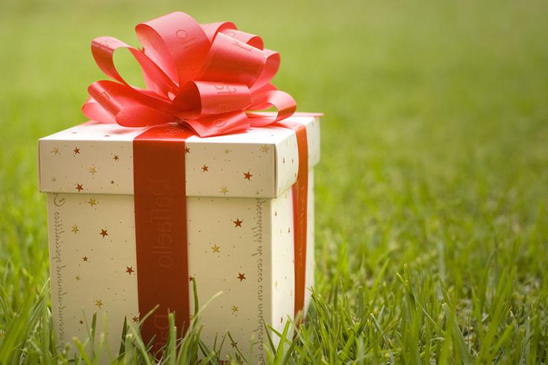 The gift by Ashraf Saleh on Flickr