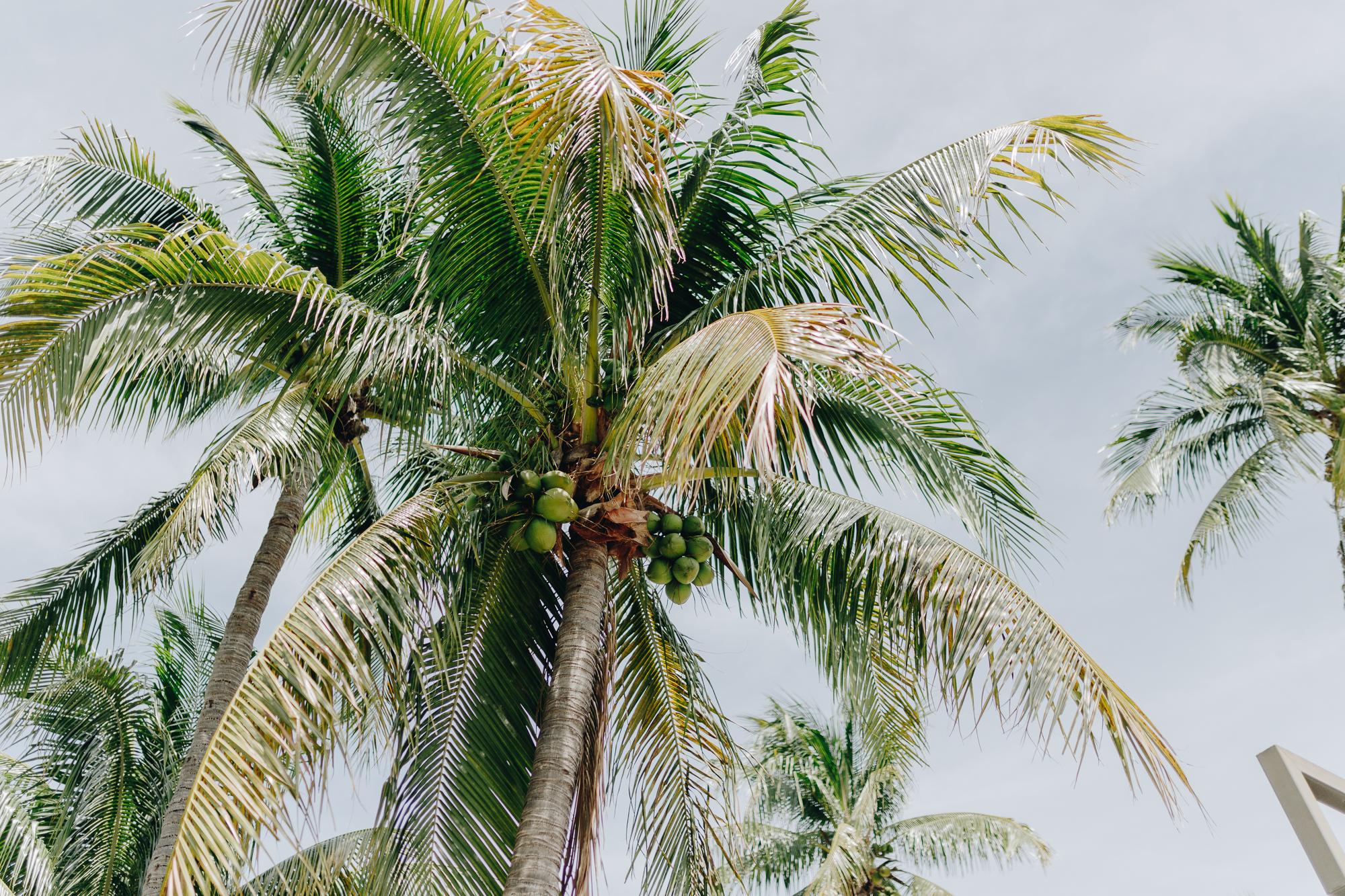 How to take great honeymoon photos