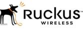 Ruckus Wireless.png