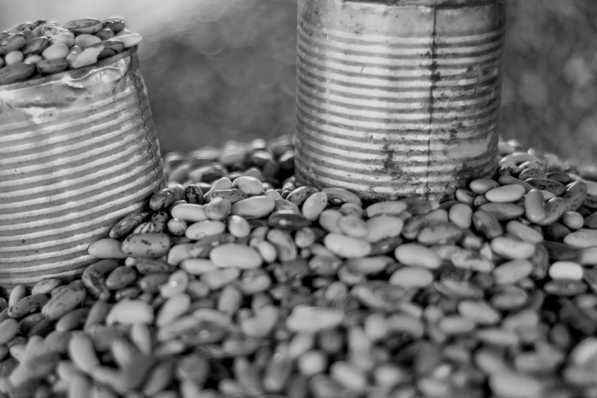 Braised Dry Beans -
