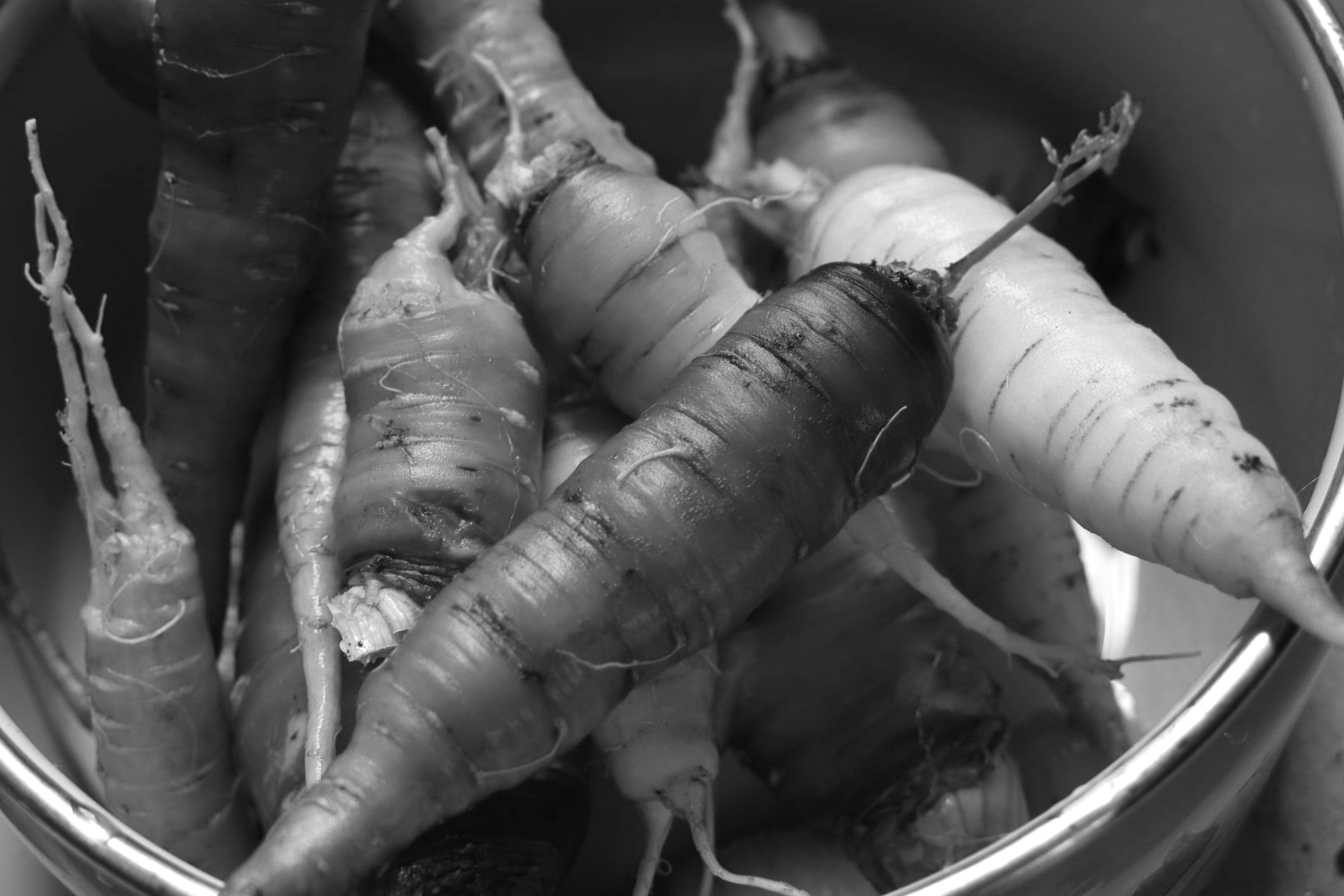 Early Spring Vegetables -