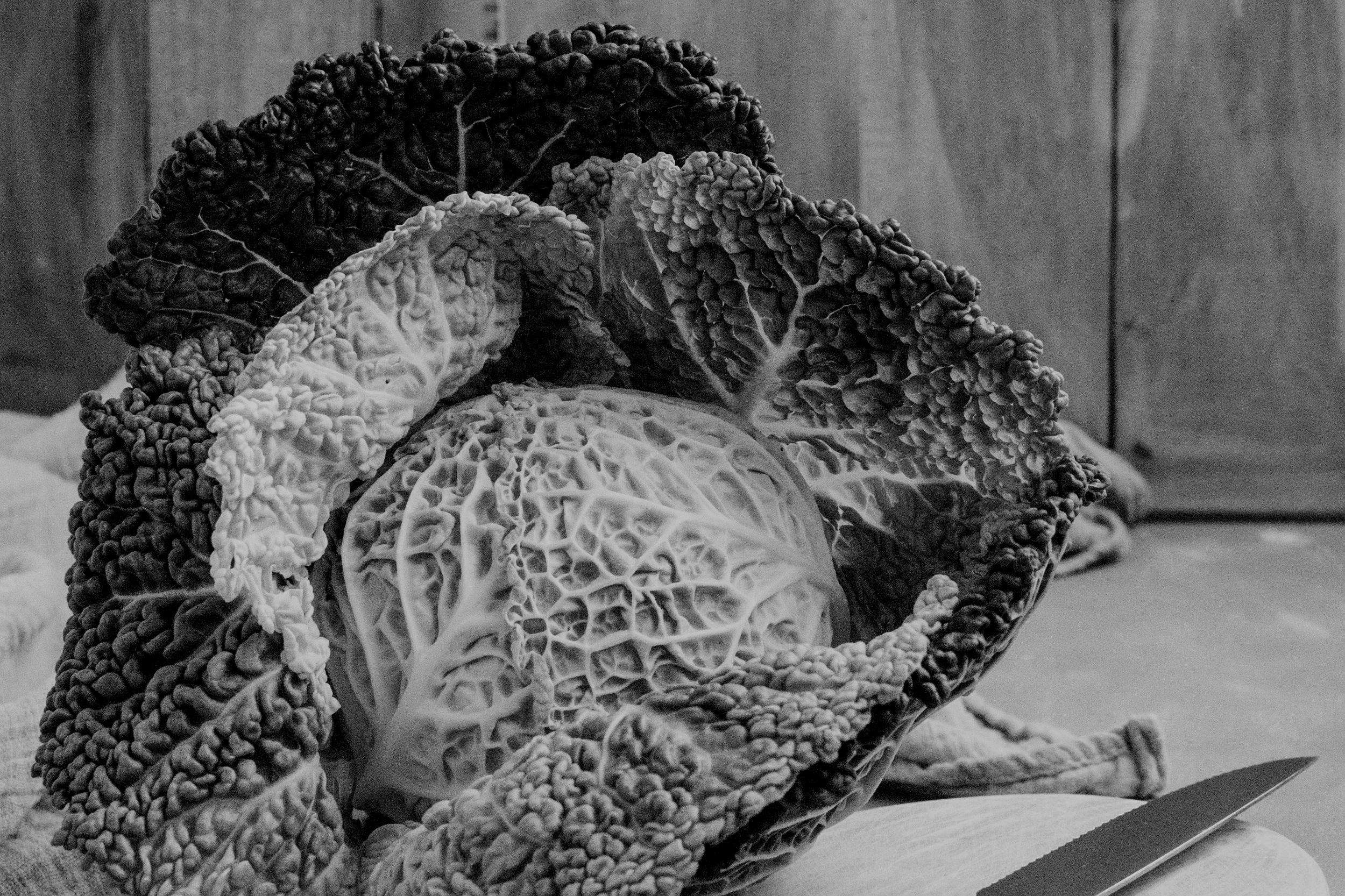 Coleslaw -