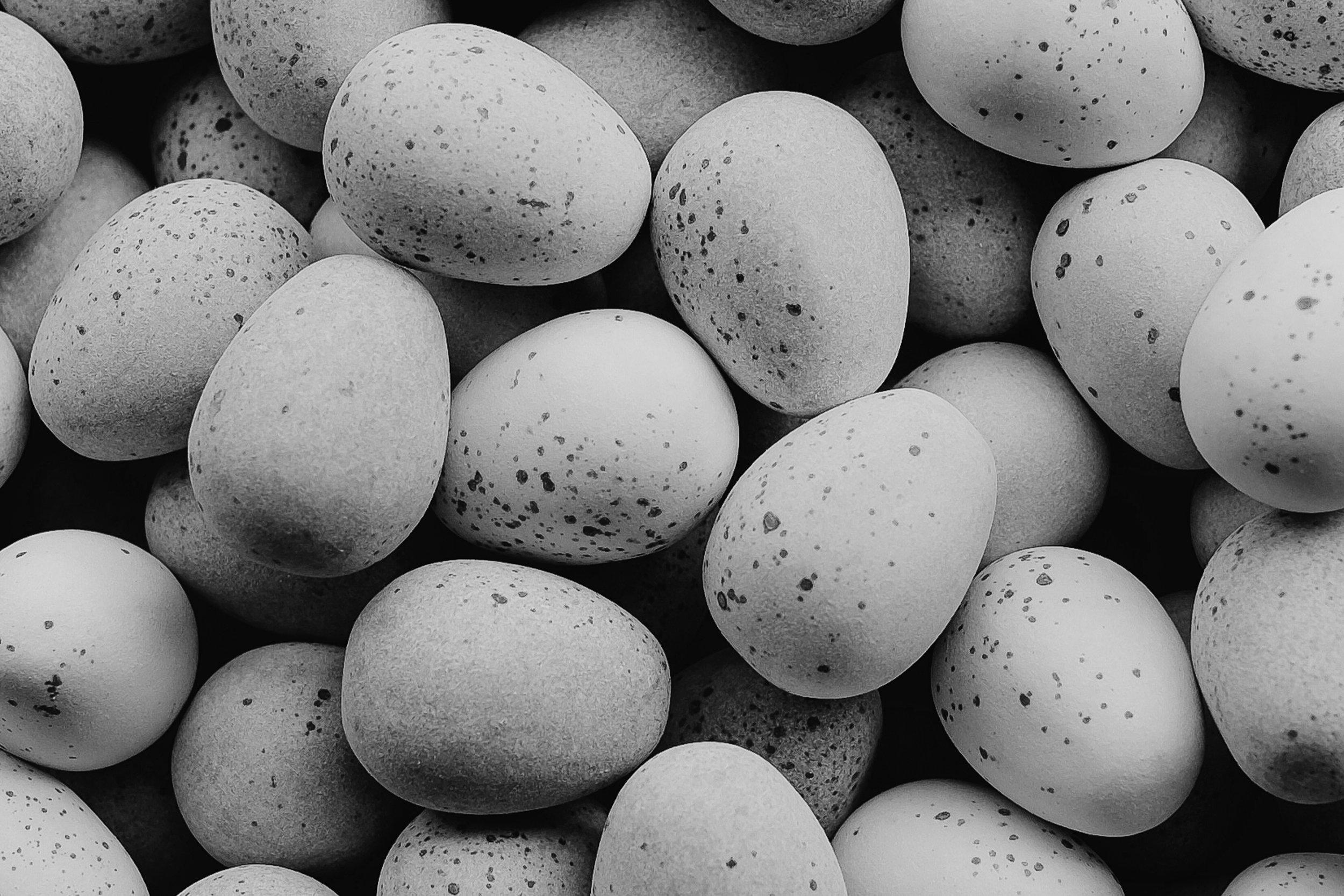 Egg Salad -