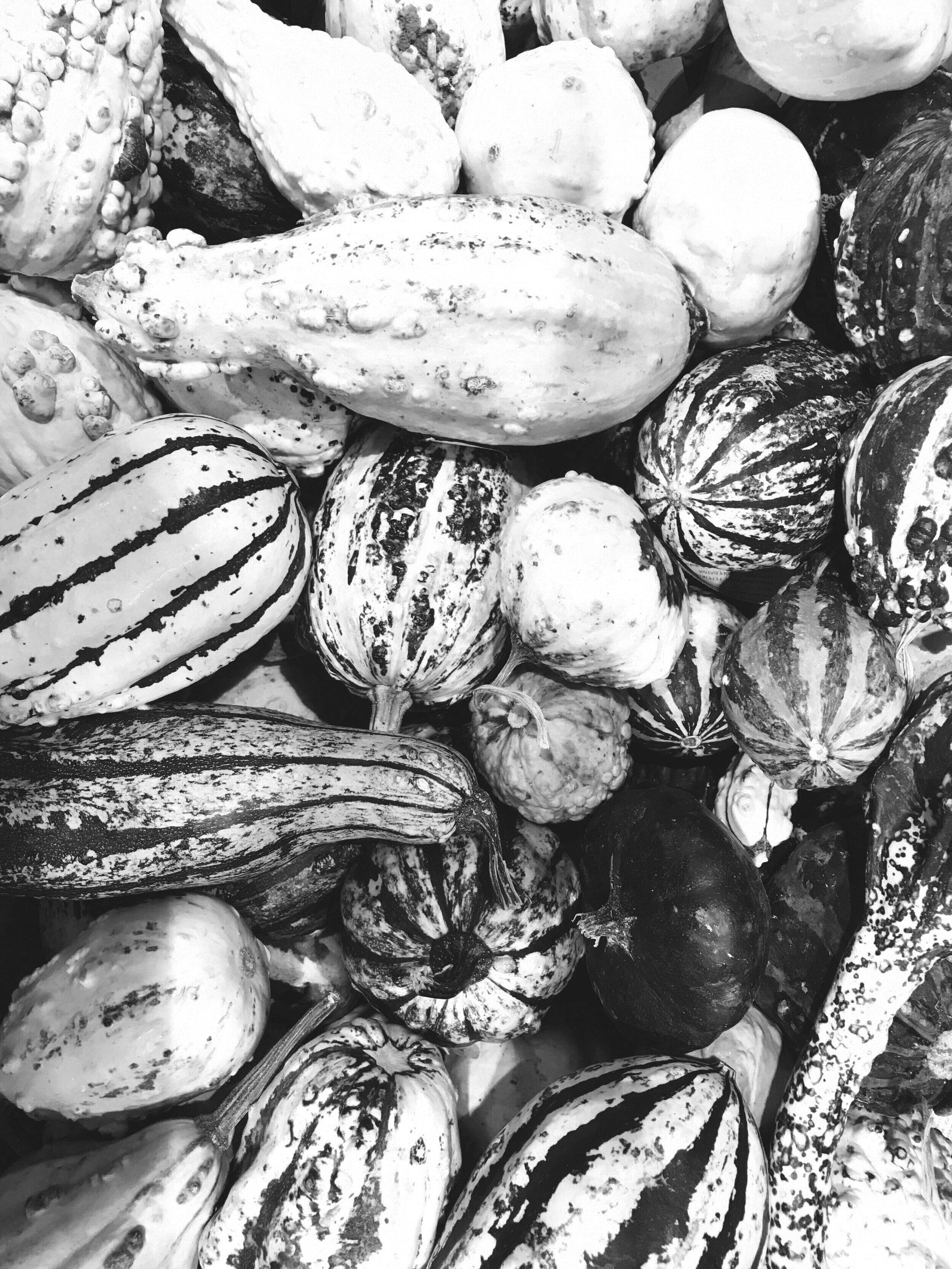 Autumn Delicata Squash Salad - 20 Minutes