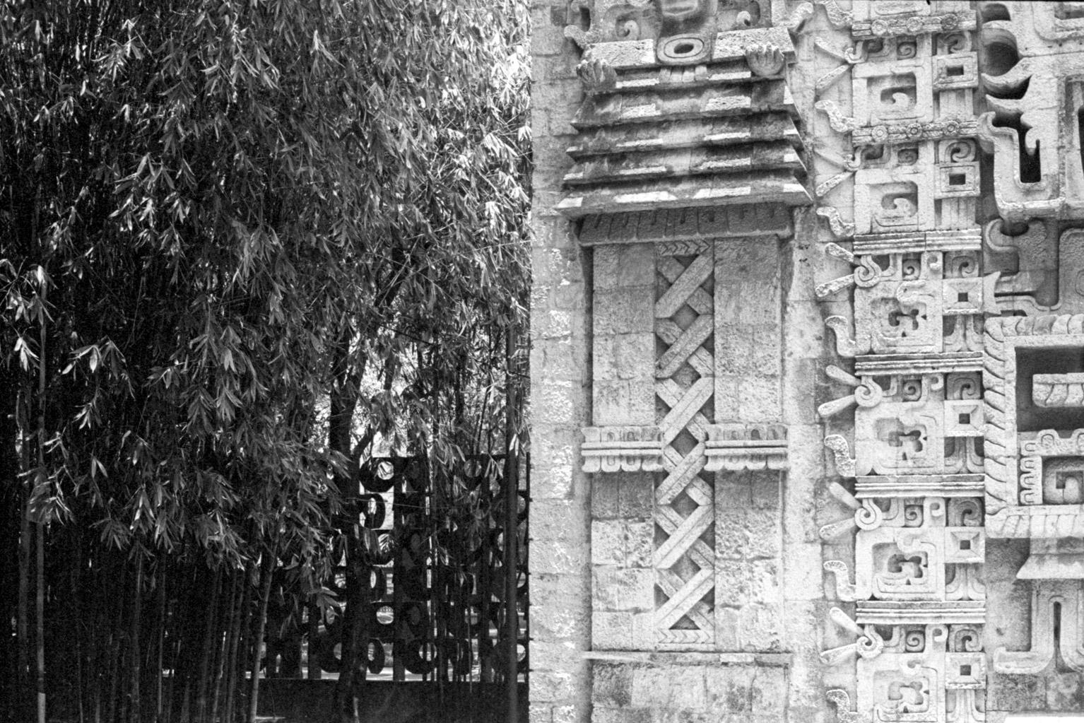 20190523_MexicoCIty_M5-KodakTrix400_010-Edit-2.jpg