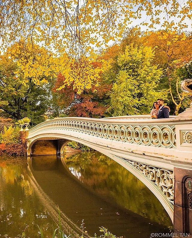 What's your favorite Fall destination? 🍁 #avacatotravel #newyorkcity  @rtanphoto