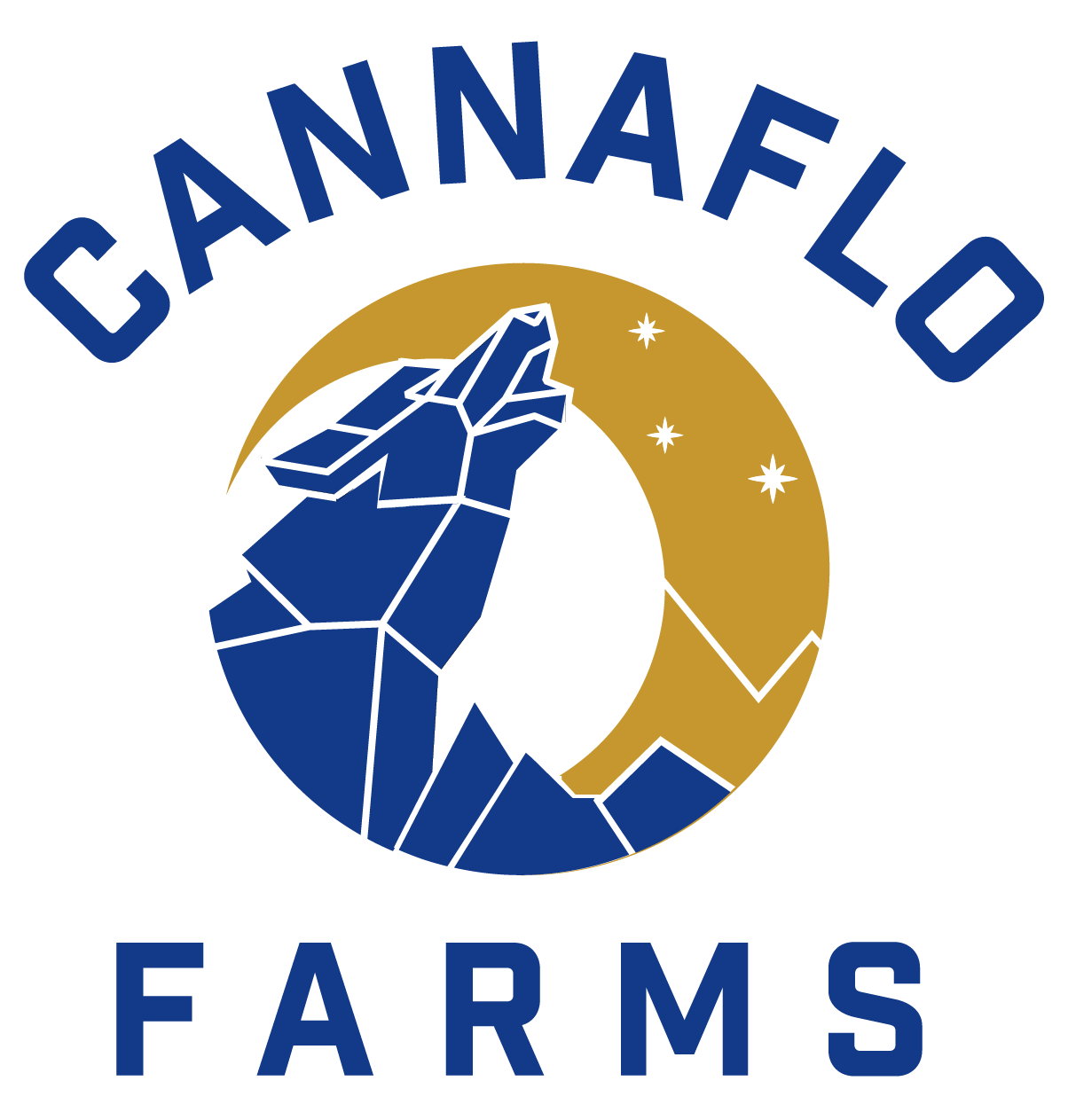 2 Cannaflo Logo Transparent Bckg.png