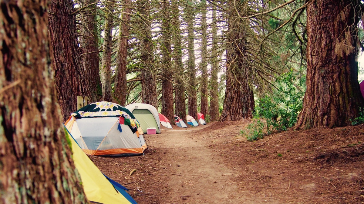 quiet-camp-home-page_Fotor.jpg