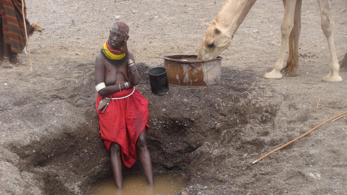 Turkana woman watering her camel herd, Kenya 2009