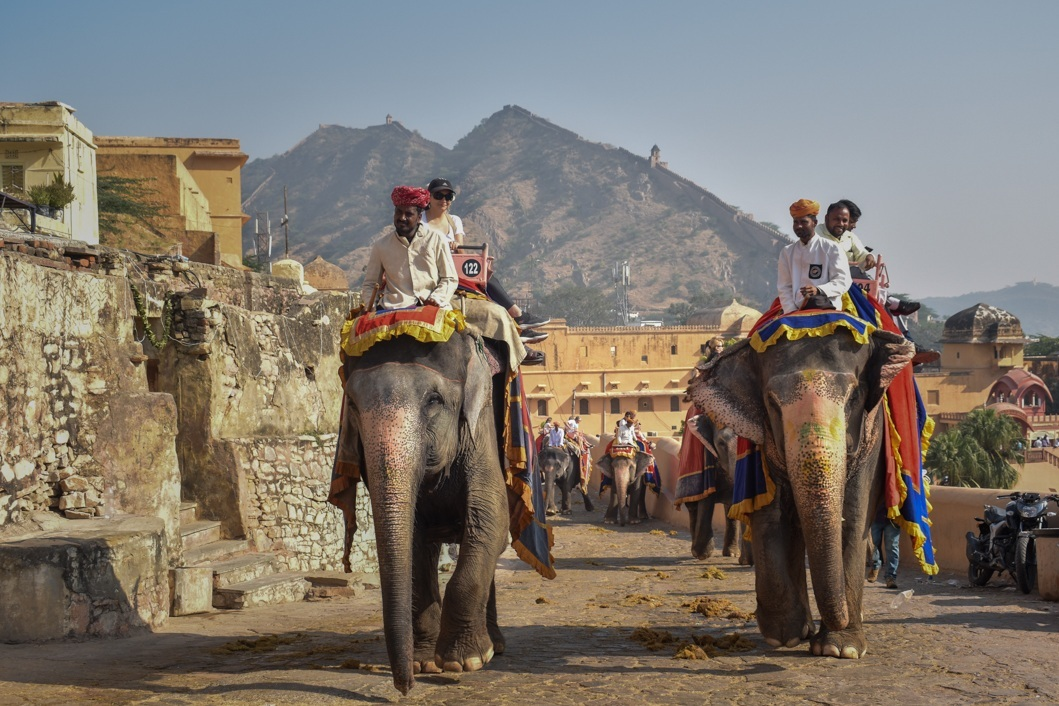 Elephant Riding at Amber Fort - Over 100 elephants, many of whom are blind or lame, carry tourists up the steep Amber Fort every day. We spent four days filming at the fort, and launched our footage with viral social media platform, UNILAD.Read more