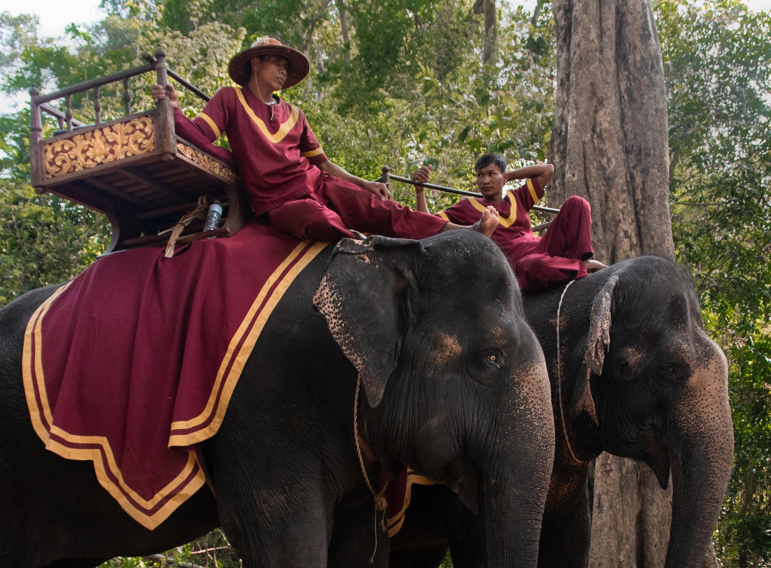 Angkor Wat 2 free with Moving Animals credit.jpg