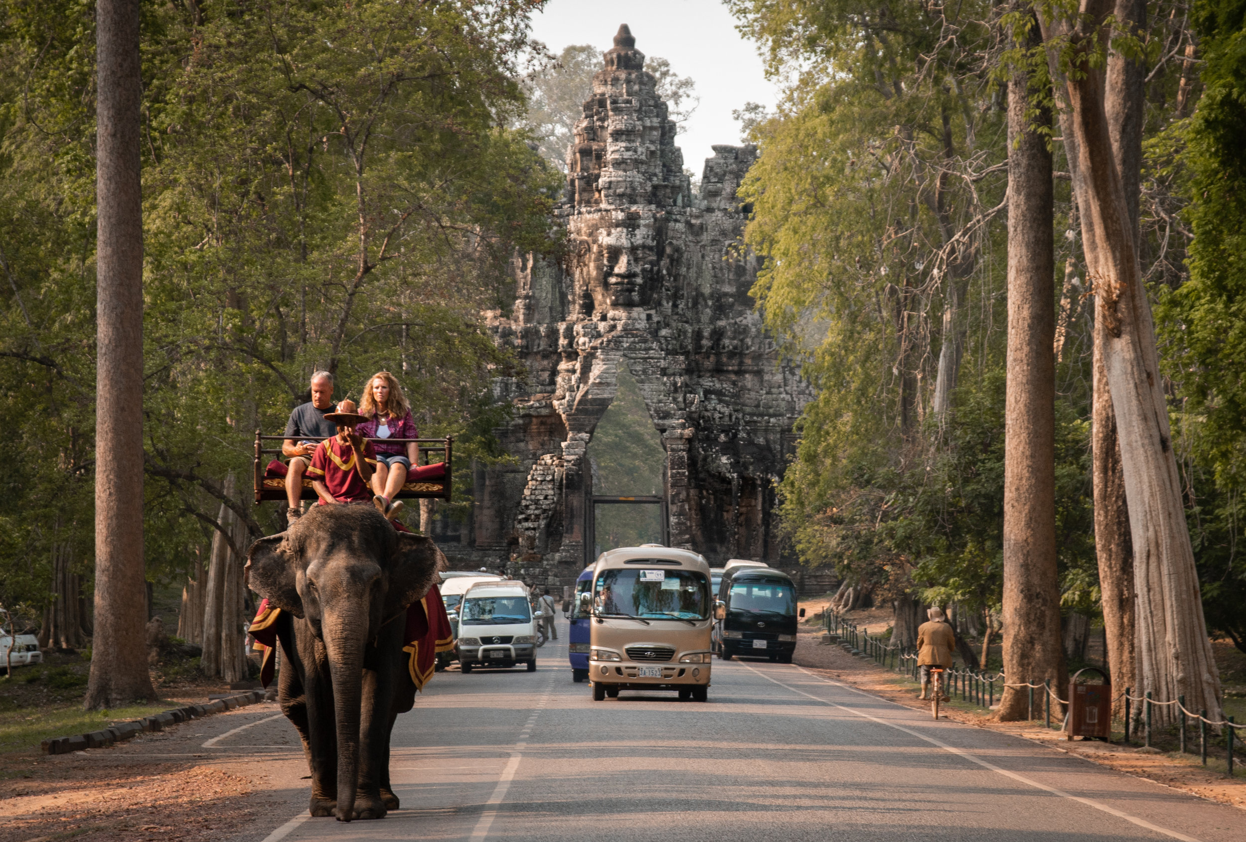Elephant Riding To End at Cambodia's Angkor Wat - After learning that elephant rides are set to end at the iconic tourist attraction, we used our photographs and research to ensure that this incredible news made international headlines. The story went viral and helped to draw attention to the growing opposition to unethical wildlife attractions.Read more