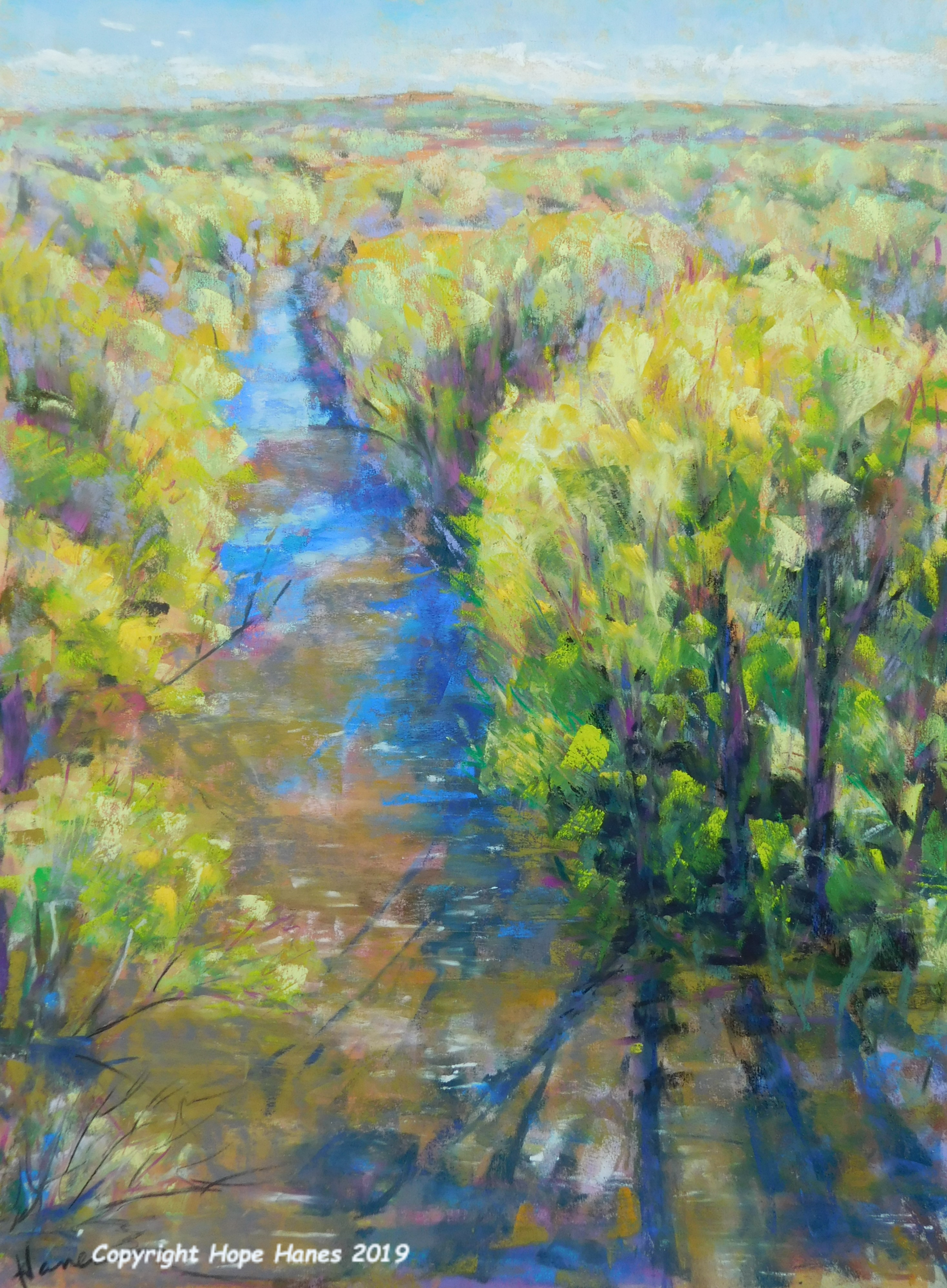 """""""View from the High Bridge"""" 2019"""
