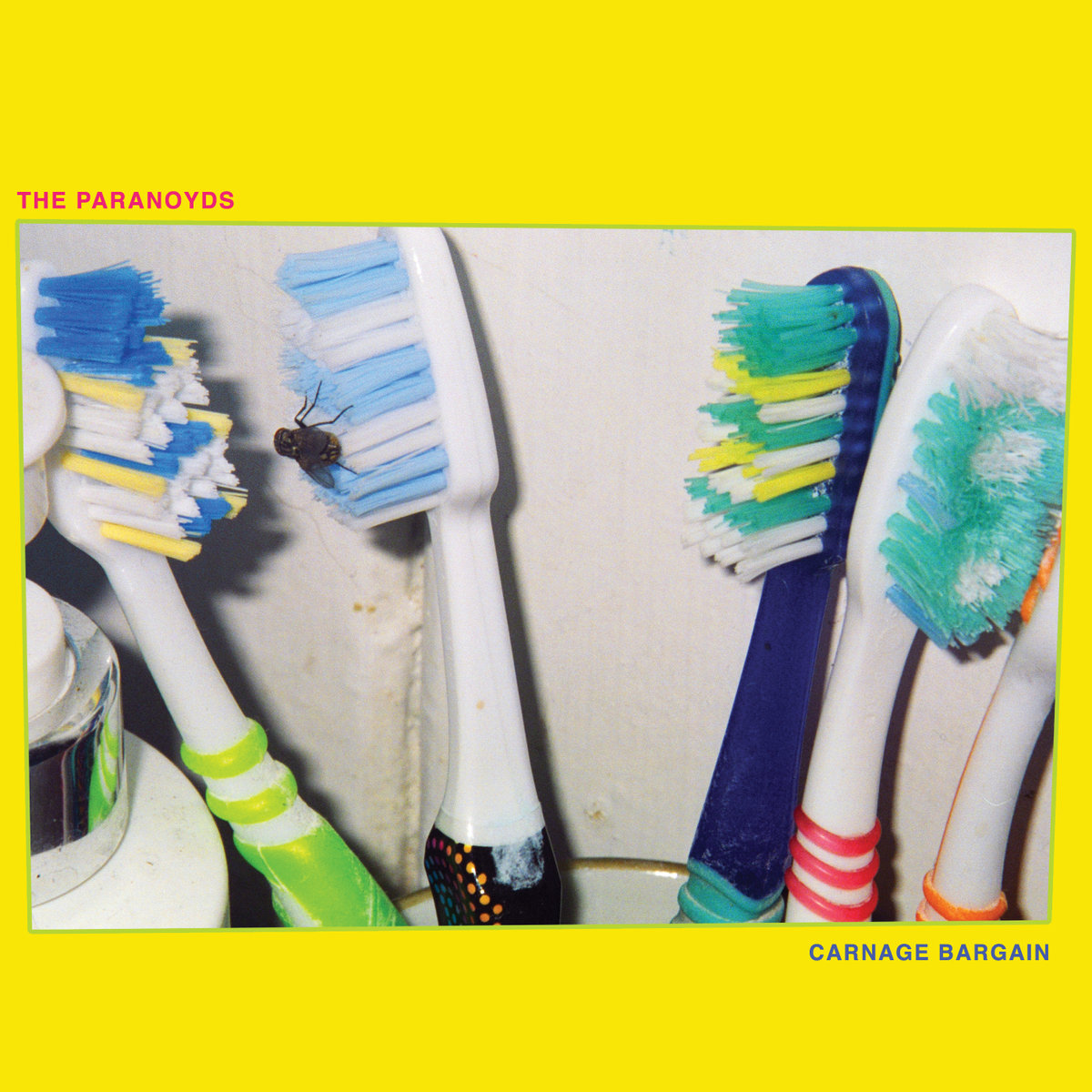 The Paranoyds — Carnage Bargain - Suicide Squeeze Records, Sep. 2019