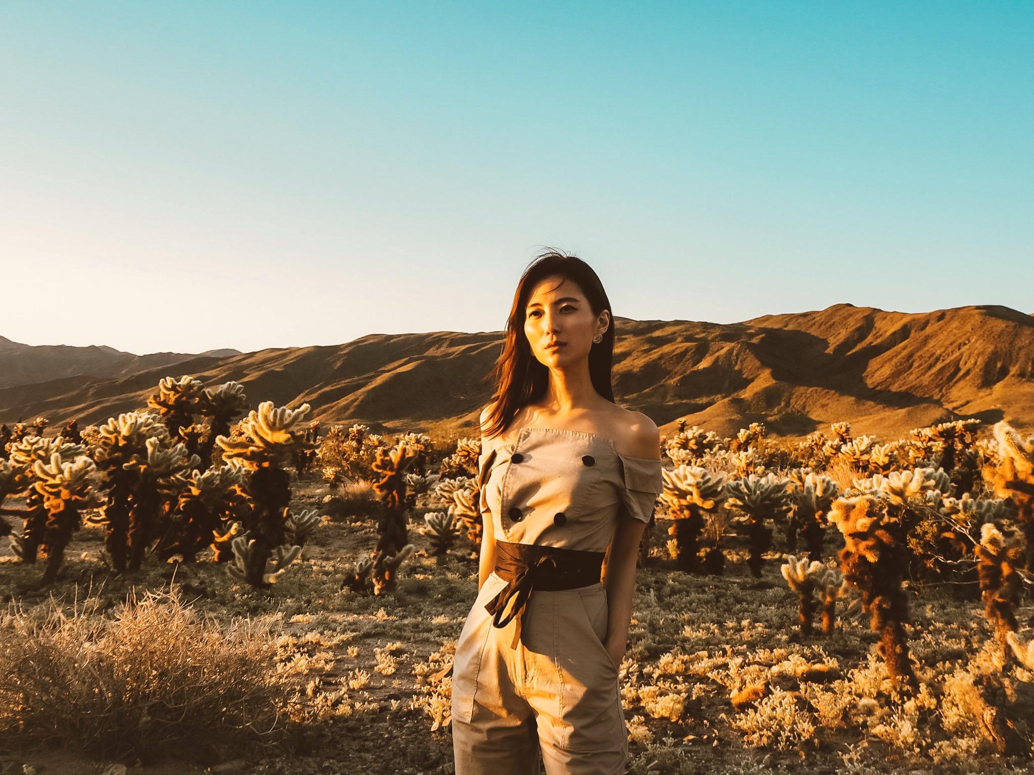 Joshua Tree National Park — Adventures of Peony self improvement