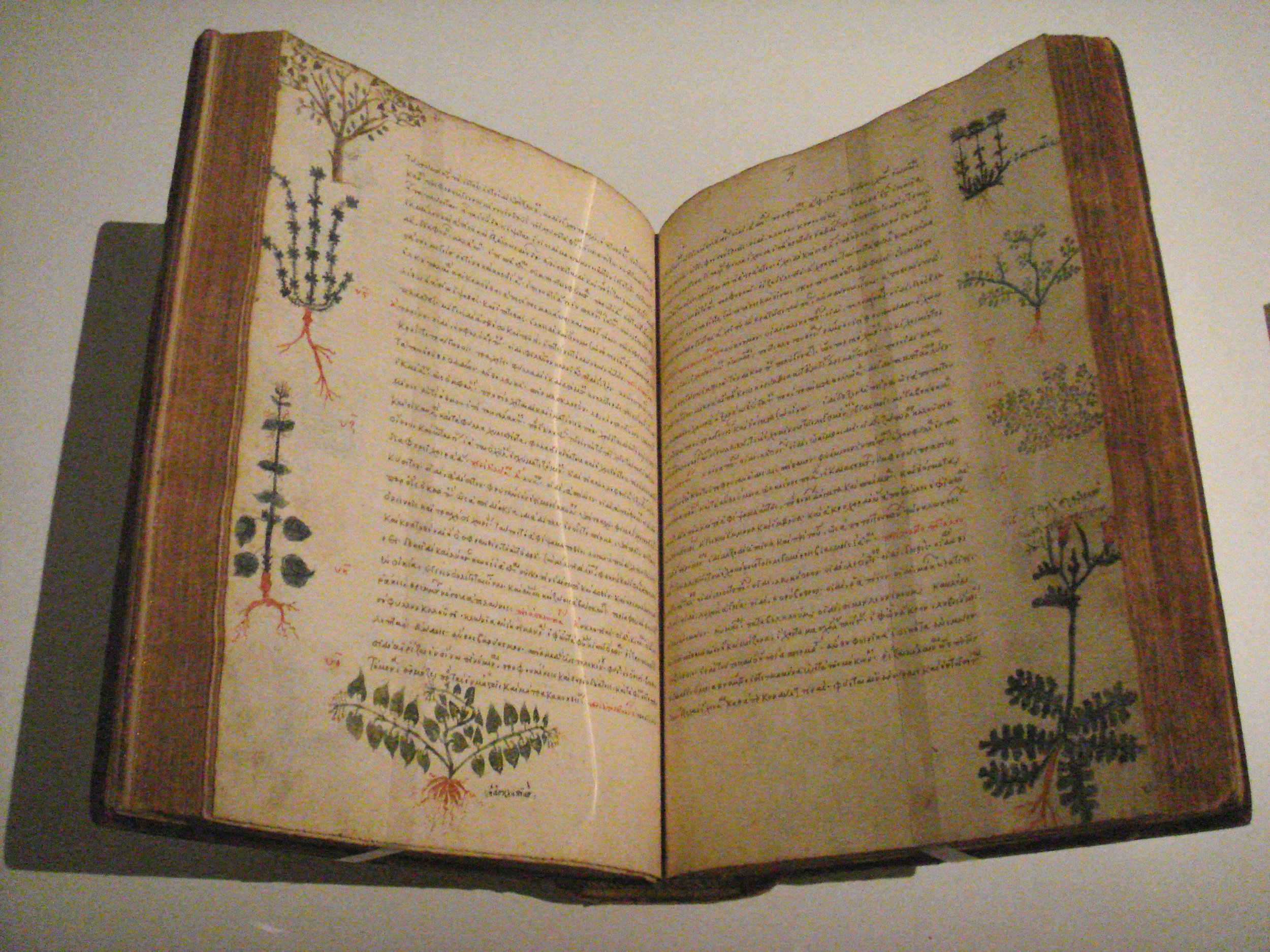 De Materia Medica  by Pedanius Dioscorides