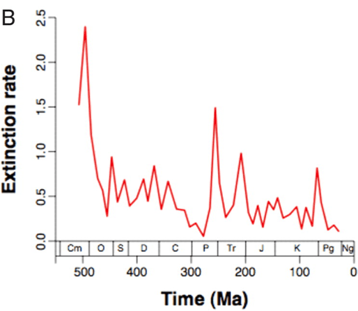 Extinction rate of marine invertebrate genera over time in millions of years ( Alroy 2008 )