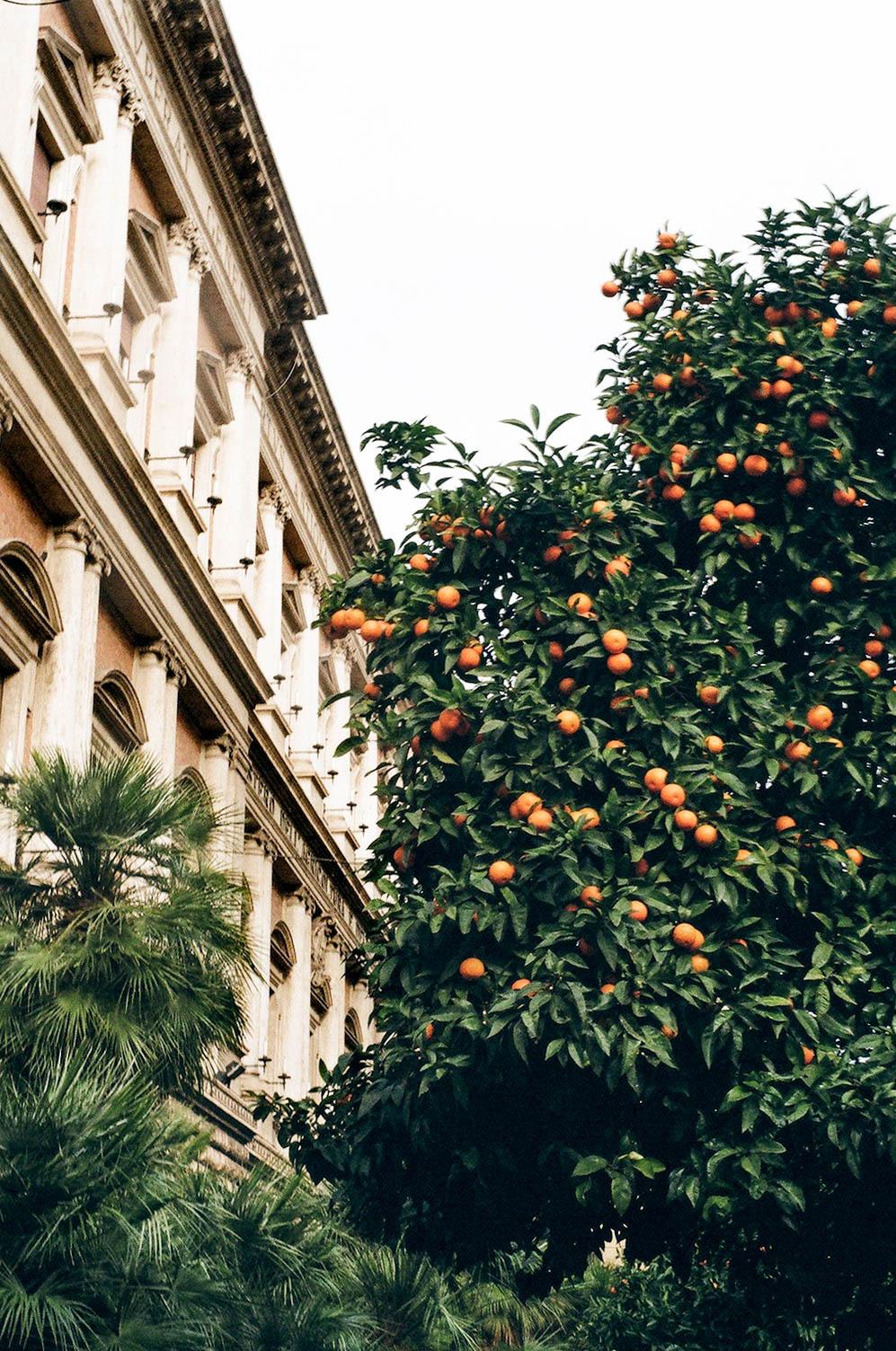 rome, italy via asiadeniseshelton