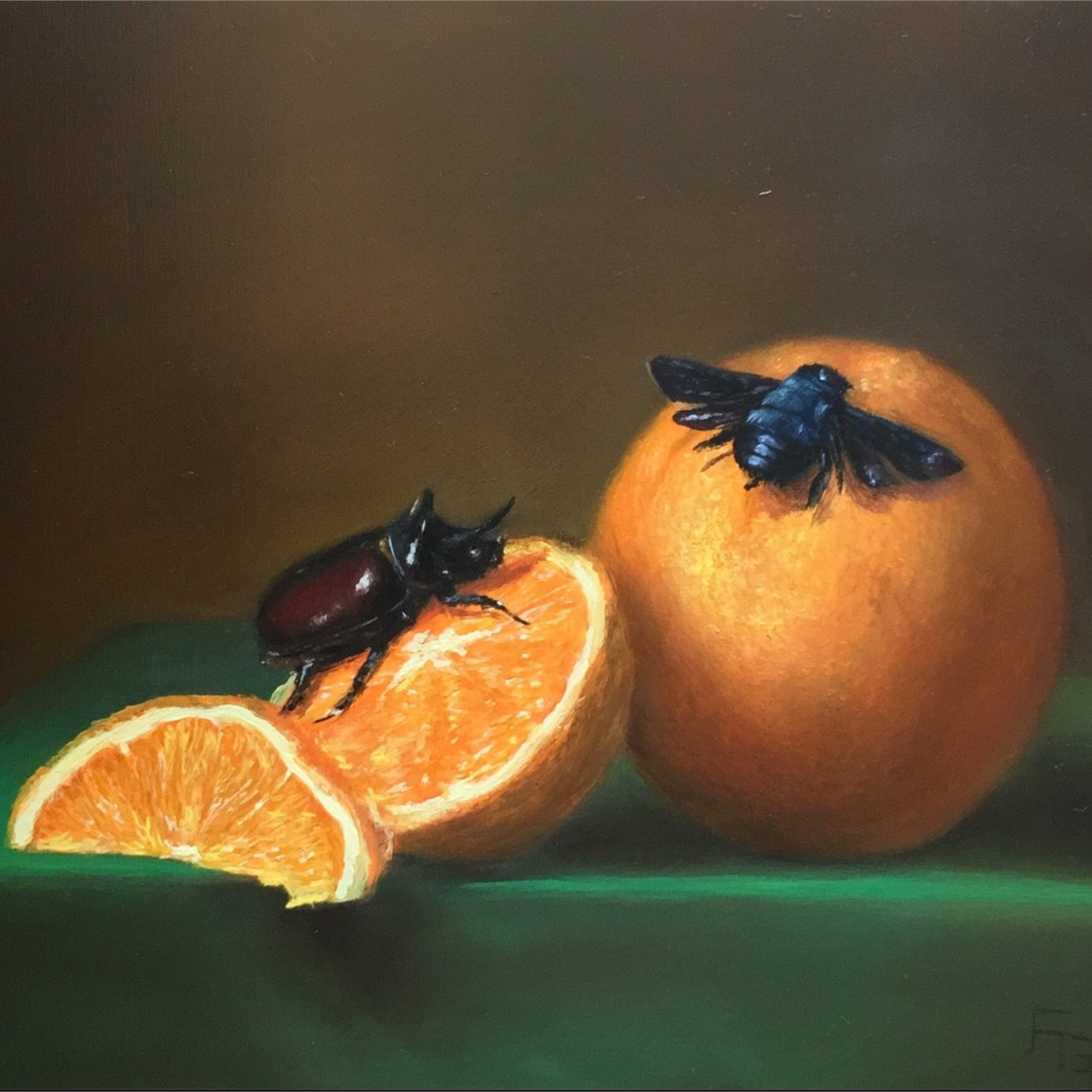 Still Life with Oranges, Rhino Beetle, and Carpenter Bee -