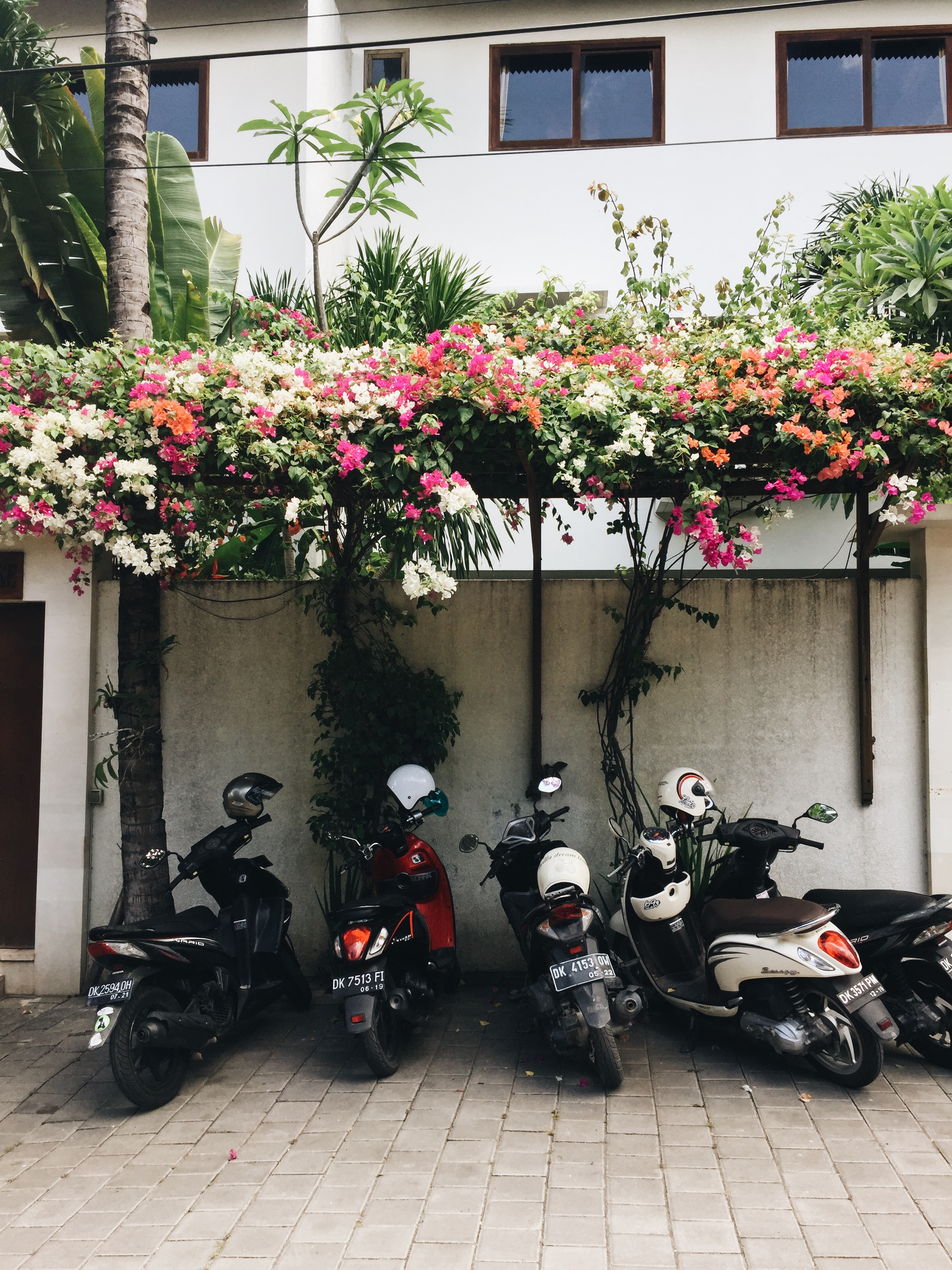 Streets of Canggu