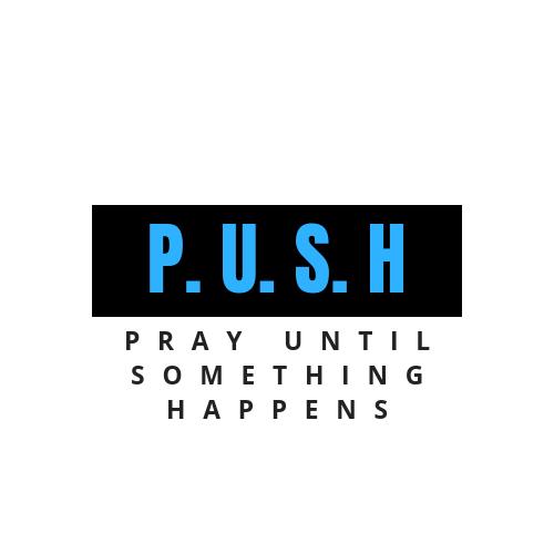 P. U. S. H.png
