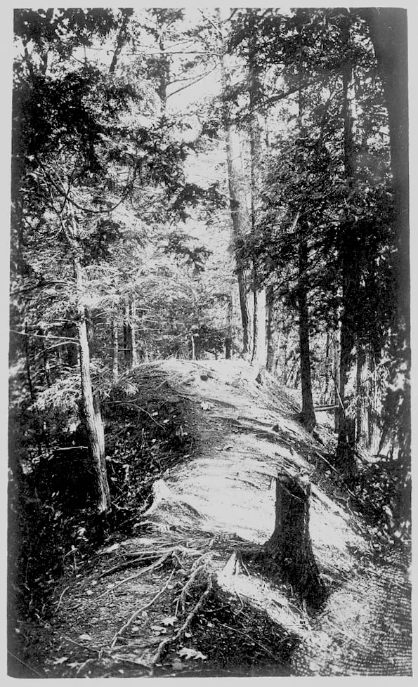 Old Indian Trail, Conesus Lake, NY (1918) (National Anthropological Archives, Smithsonian Museum)