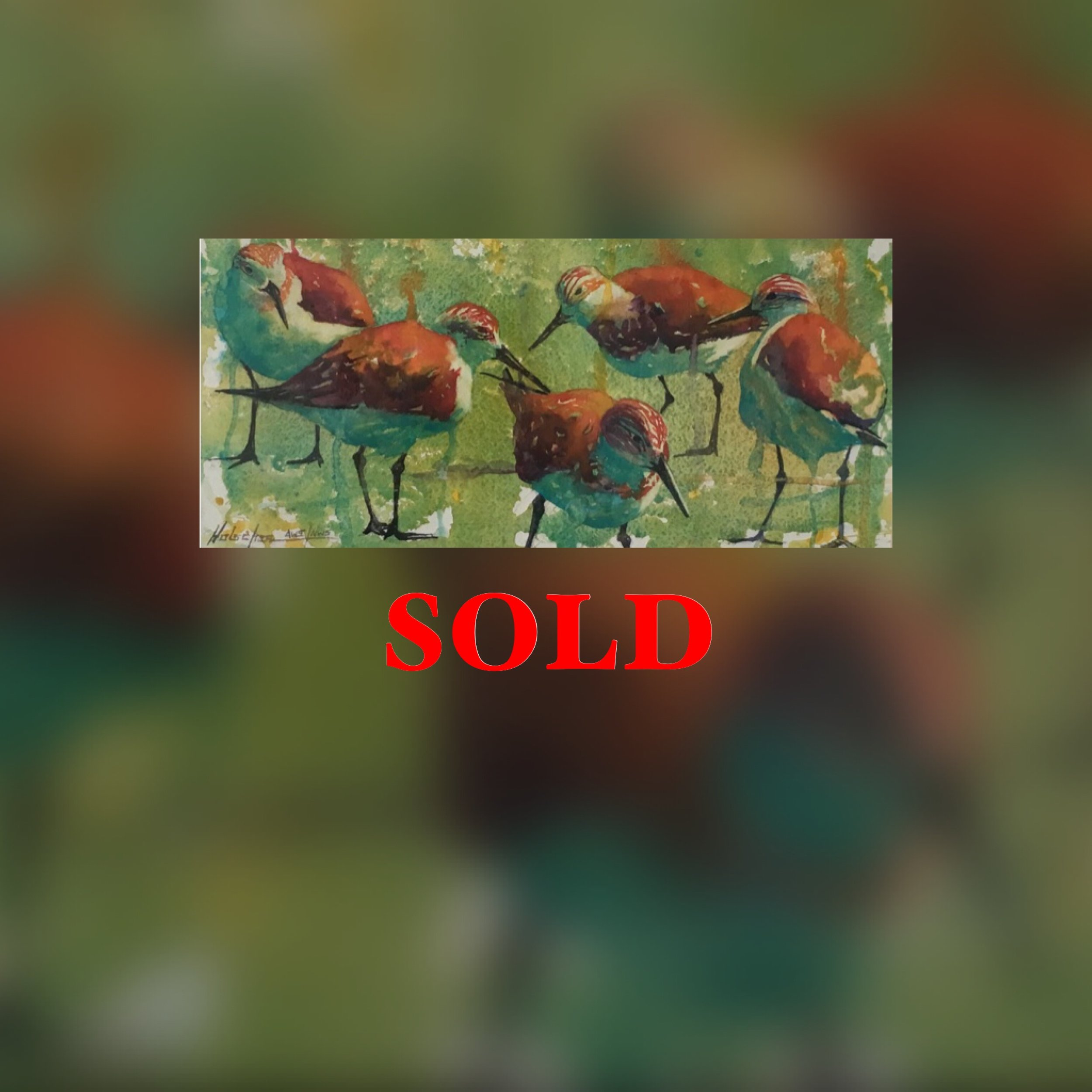 """Group of Plovers, 19"""" x 12"""", Watercolor (Original), SOLD"""