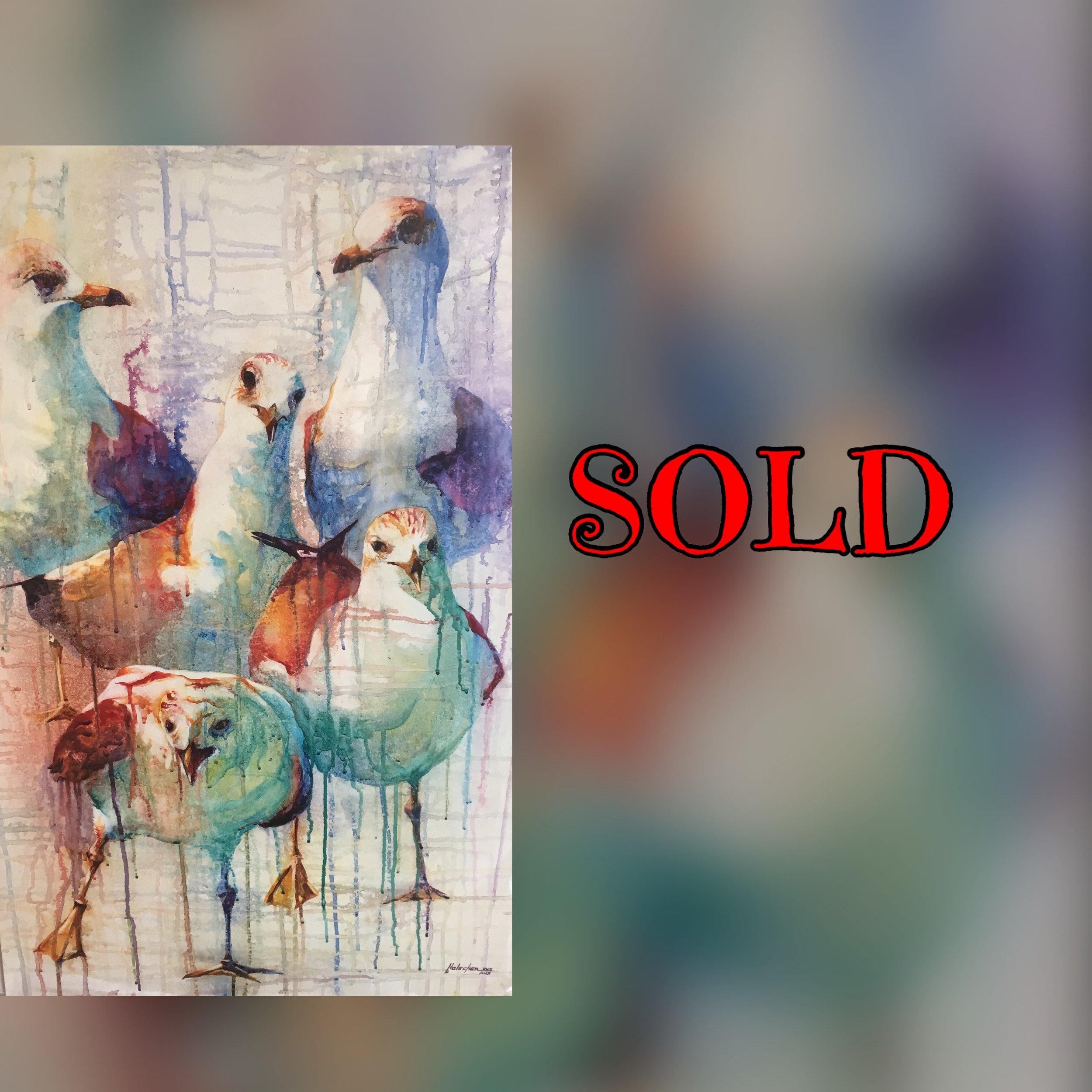 Gulls Holscher Sold.jpg