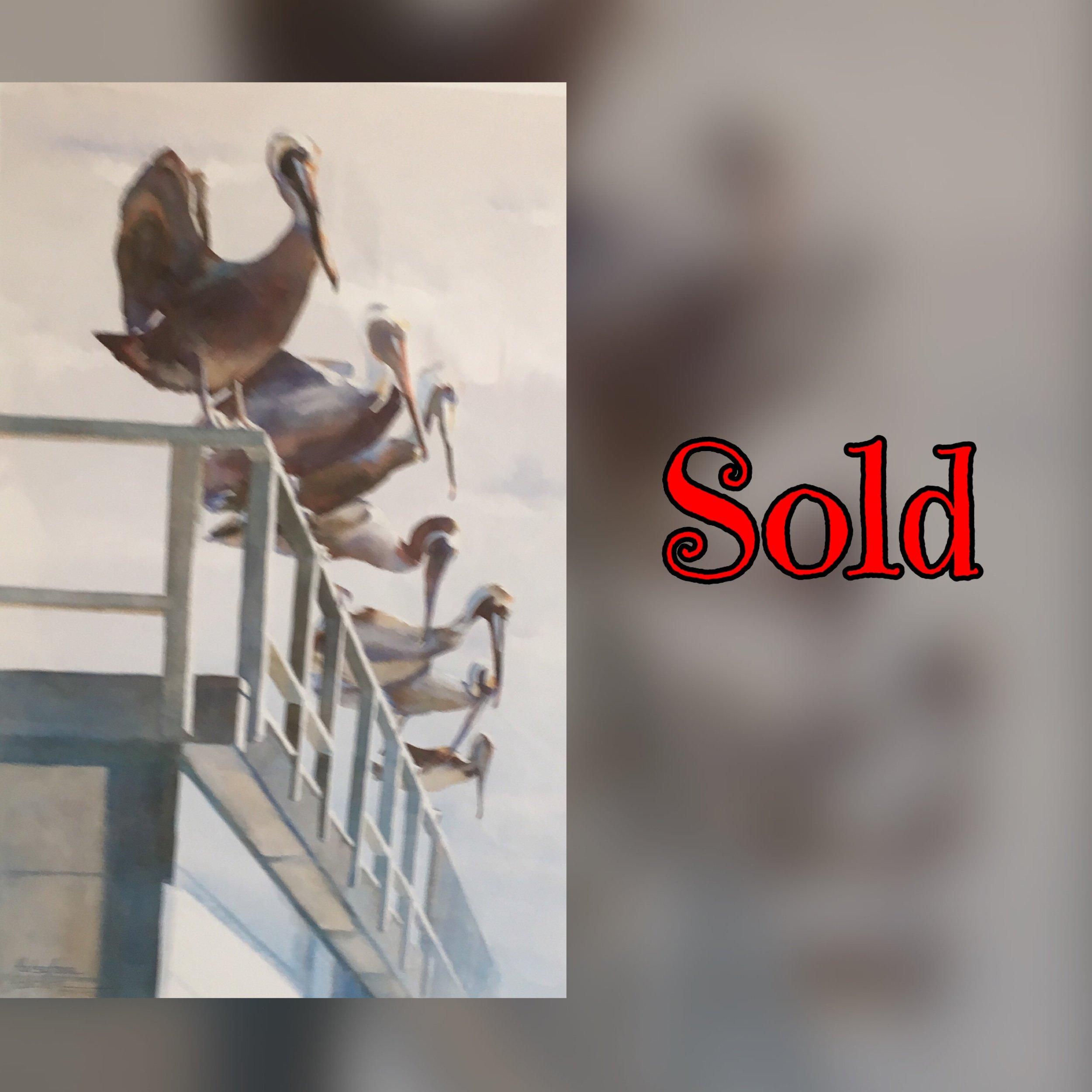Pelican Party Sold.jpg