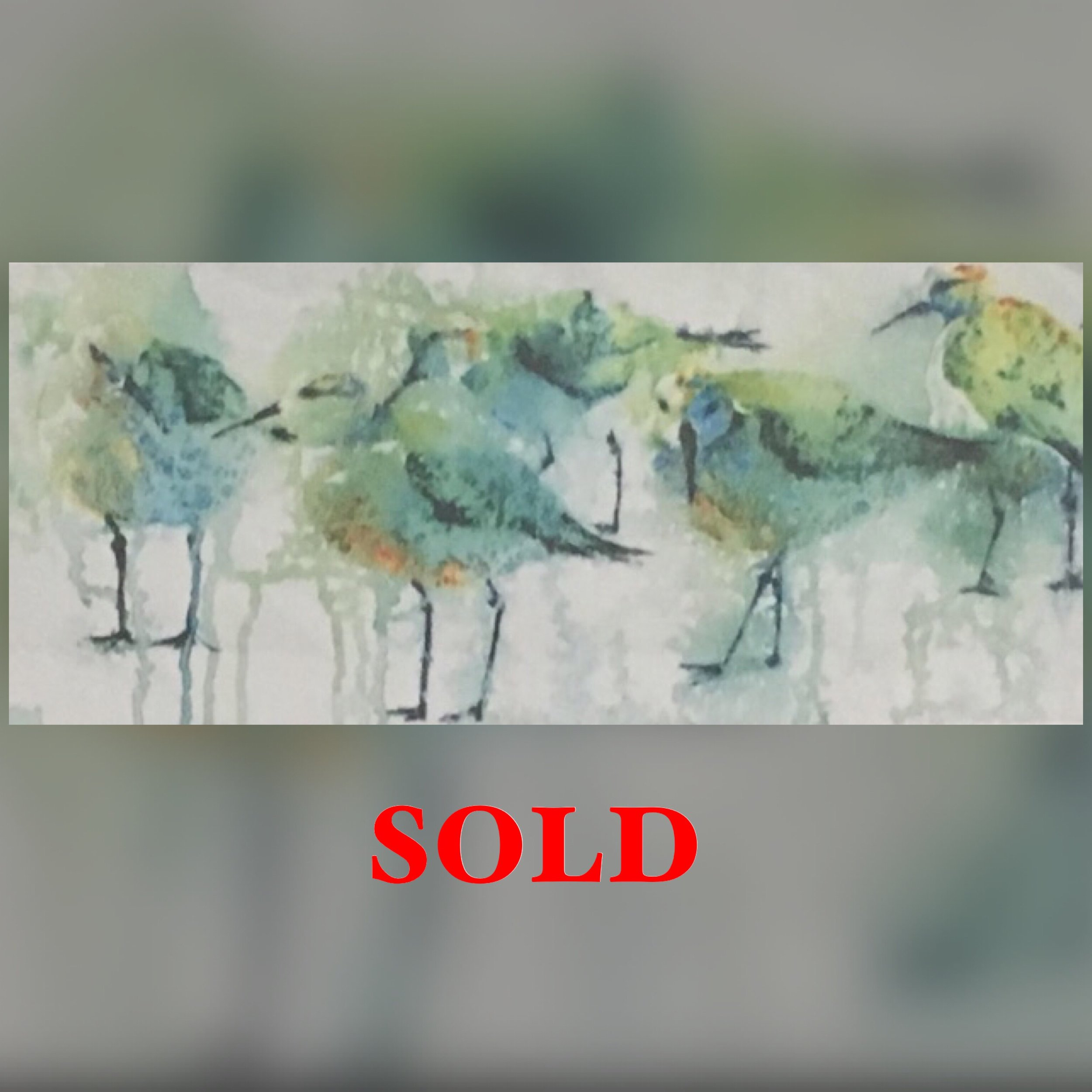 """Plovers (small), 11"""" x 17"""", Print, SOLD"""
