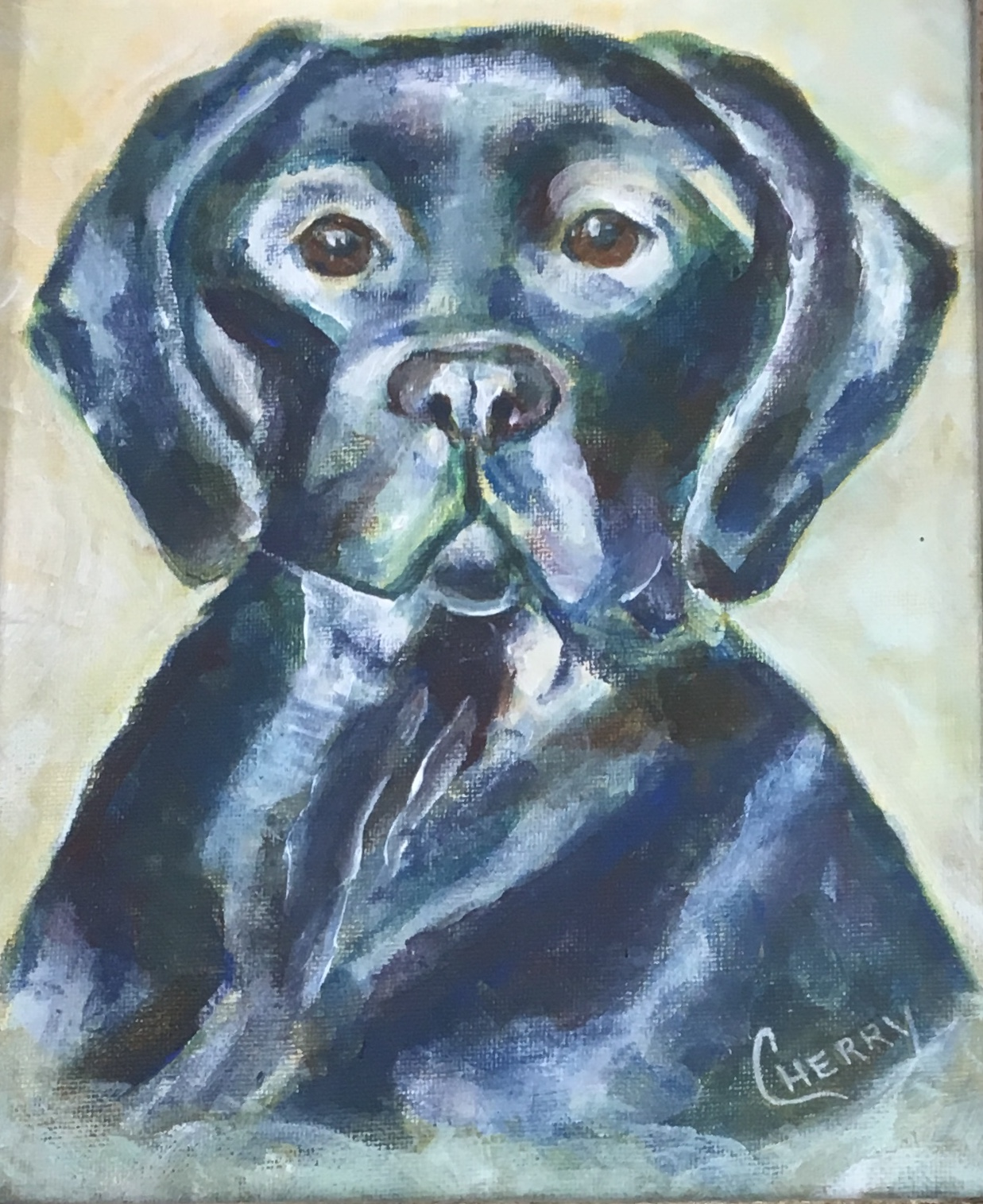 "Sweet Lab, 8""x 10"", acrylic, $125"