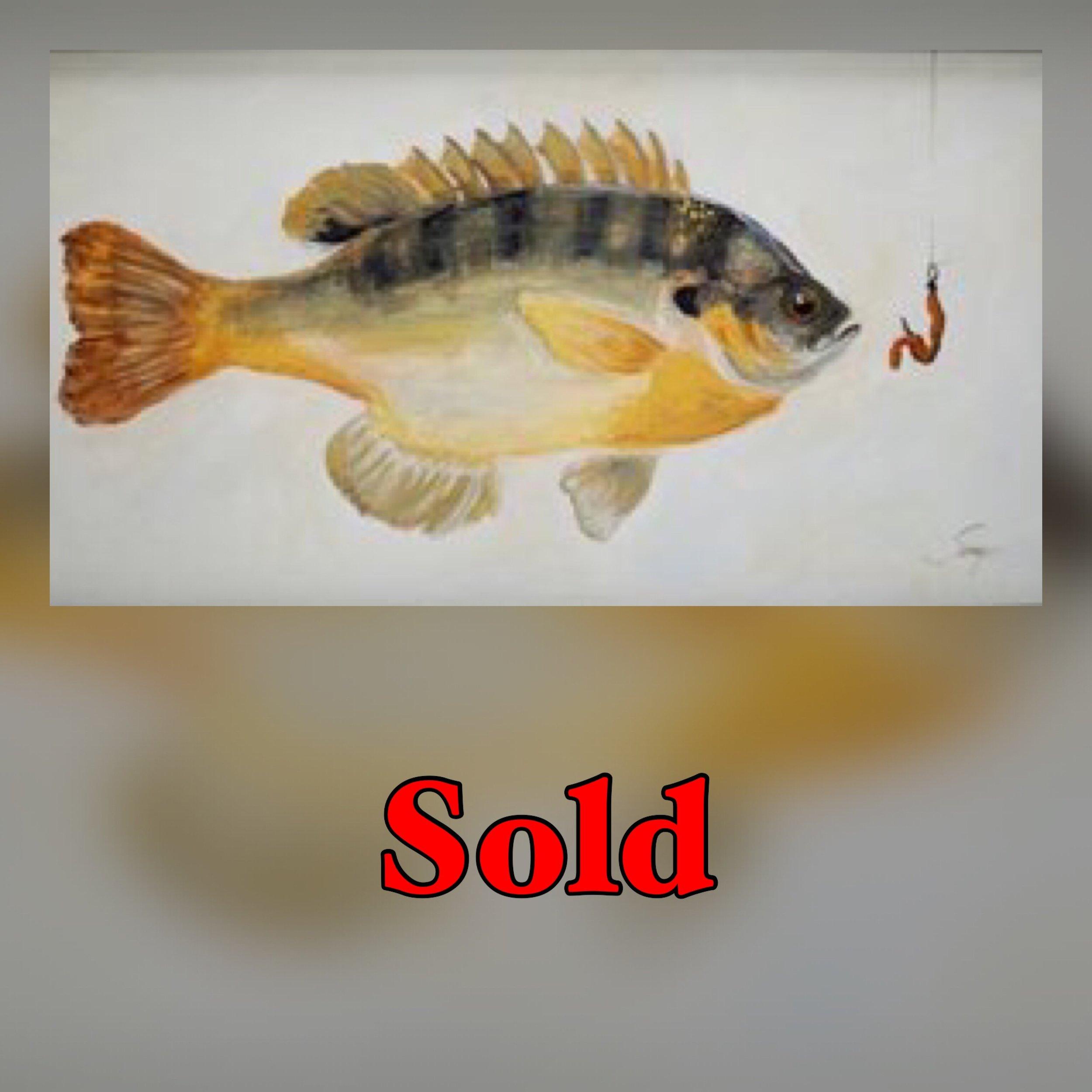 Blue Gill Sold.jpg
