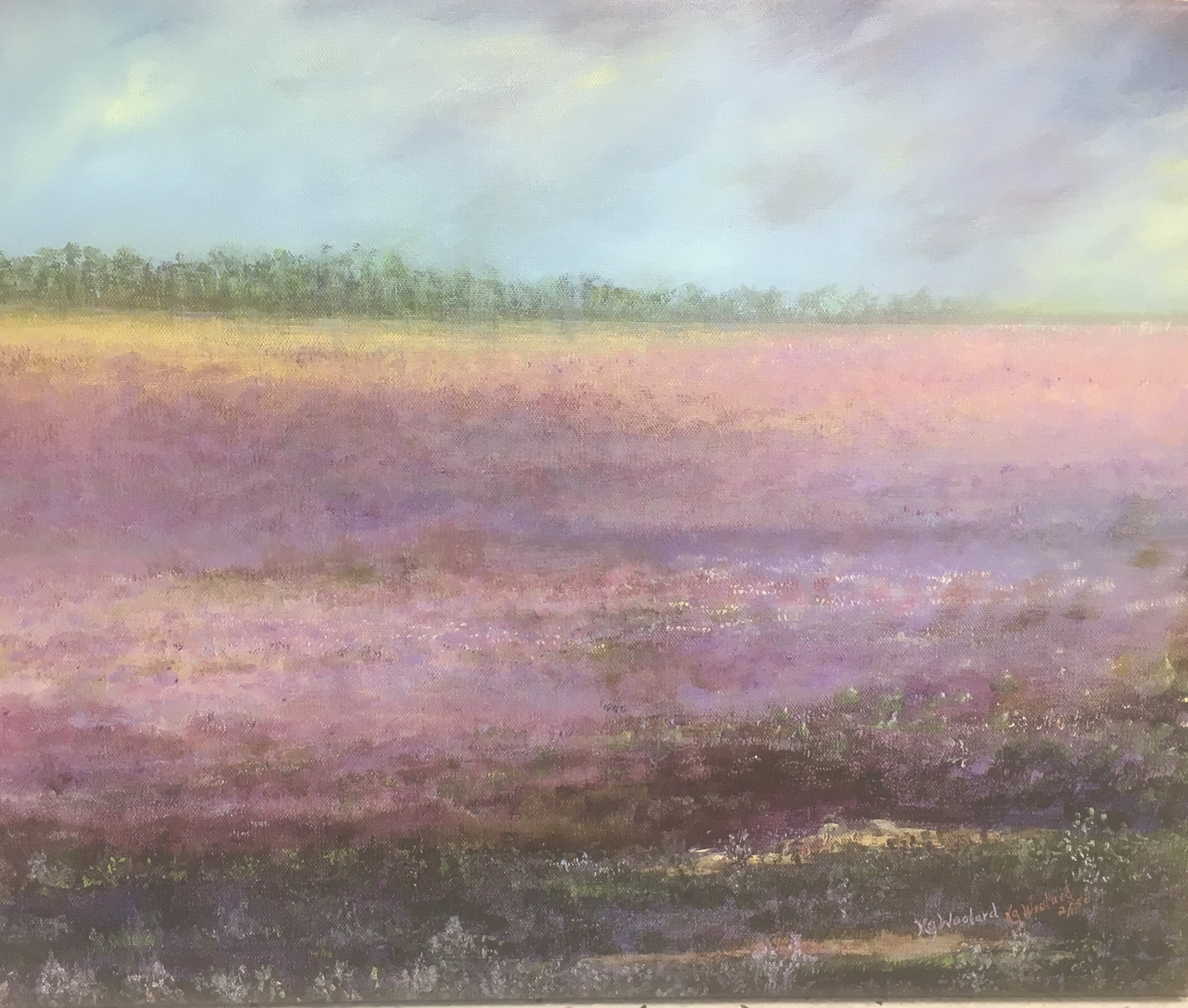 Sage Fields Forever, 16x 20, canvas giclee, $180
