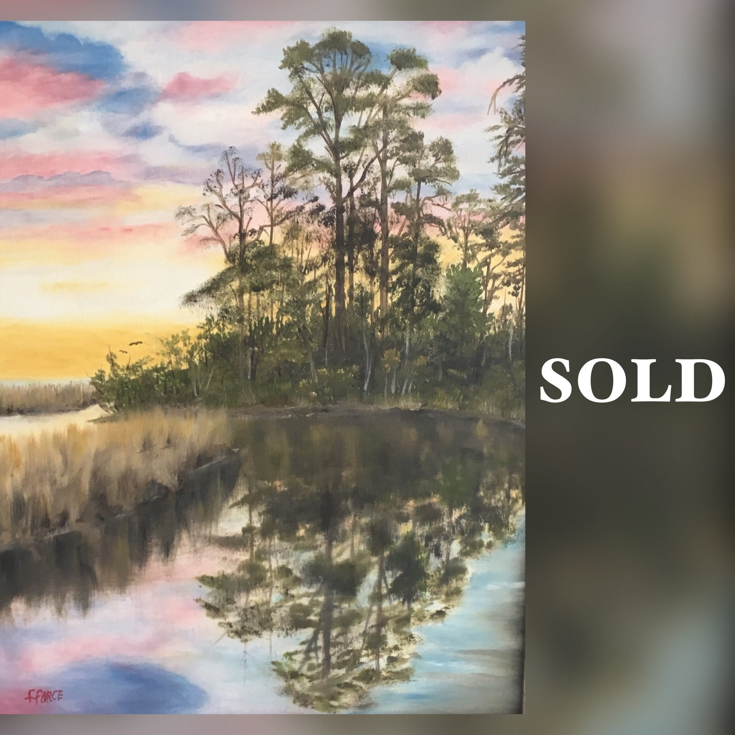 Reflections - Force Sold.JPG