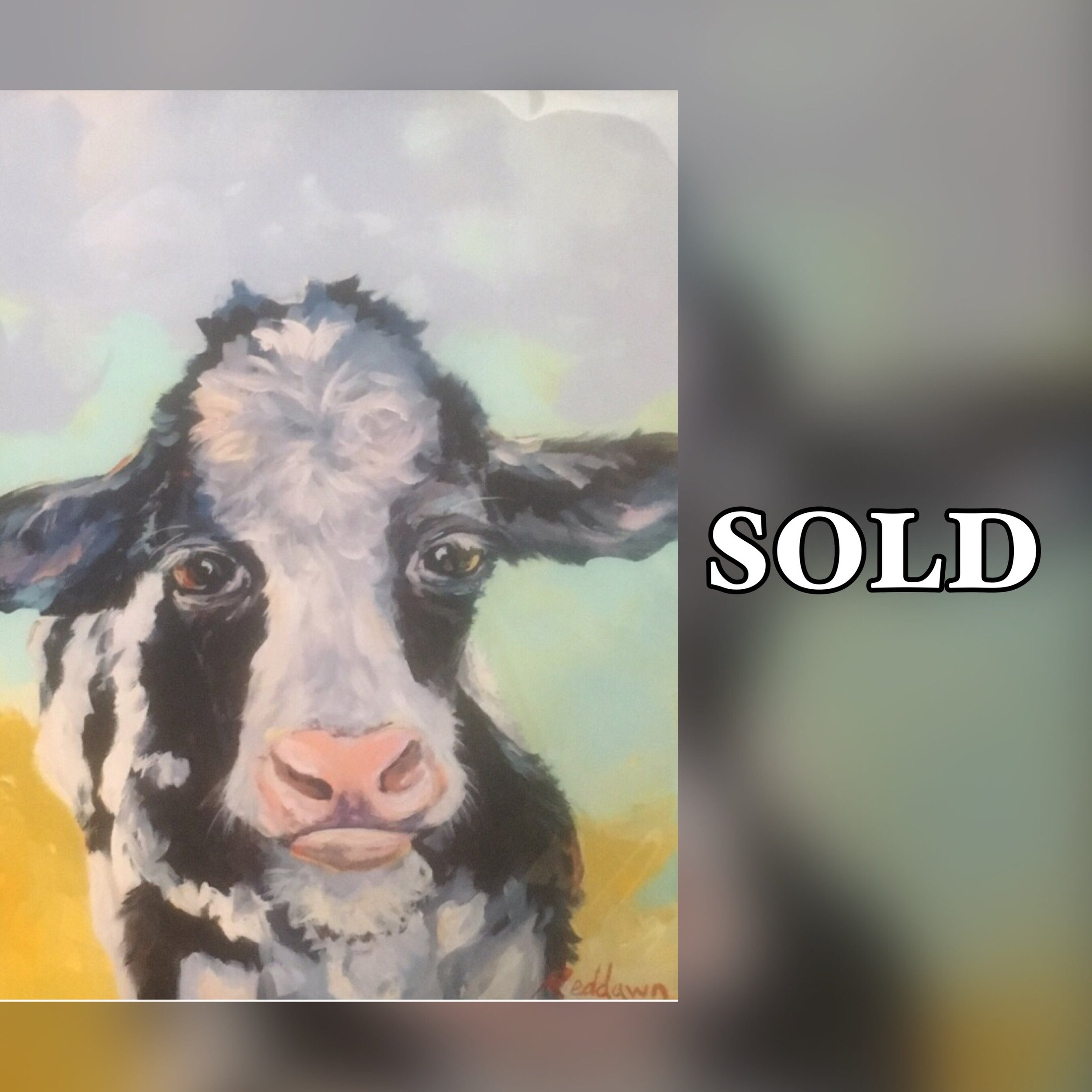 """Cow, 11""""x 14"""", print, SOLD"""