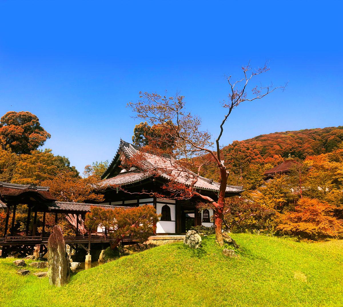 Japan_Hotel2.jpg