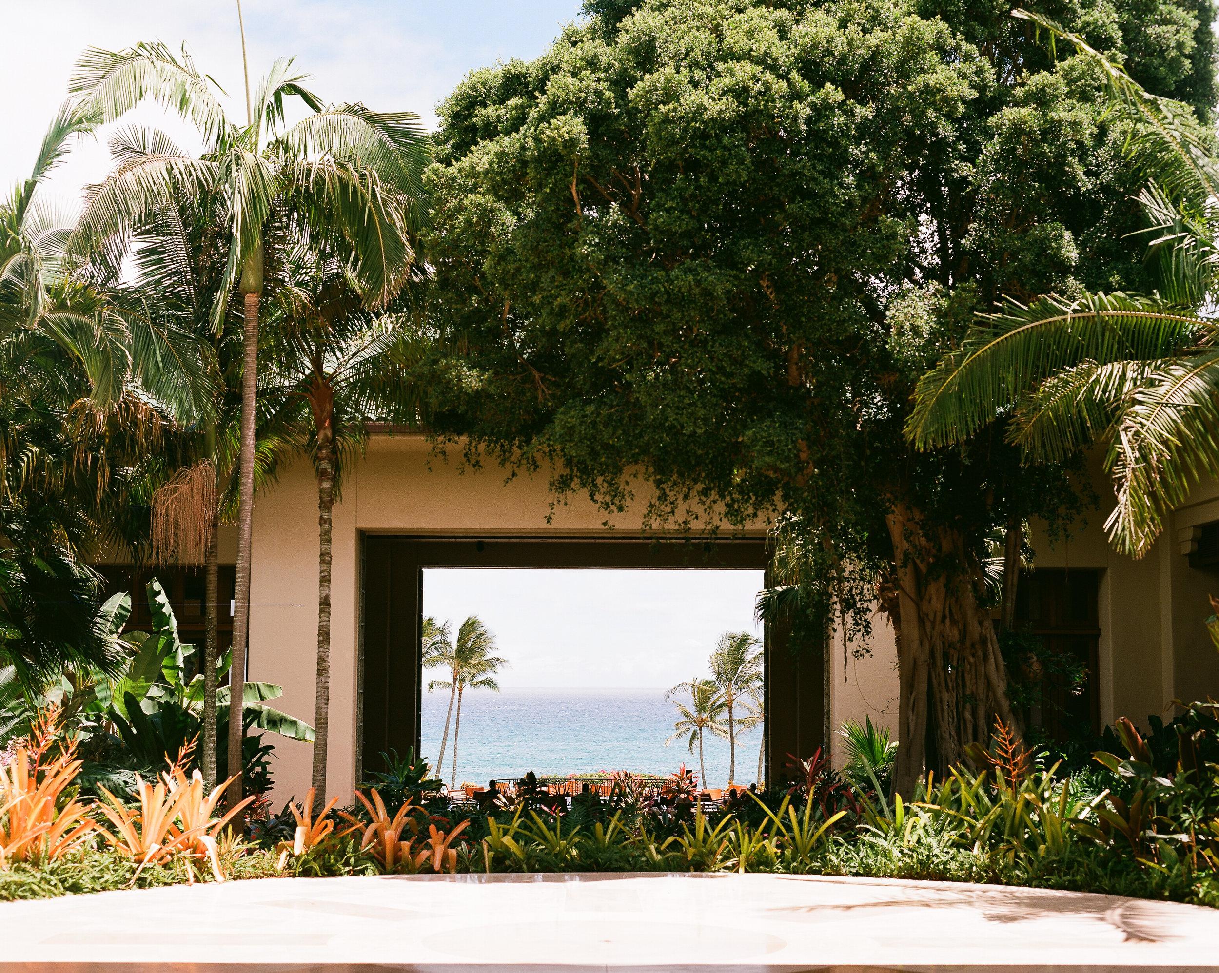 Kauai_Ektar 100_120_1.jpg