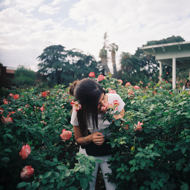 DTLA Roses_Portra 800_120_3.jpg